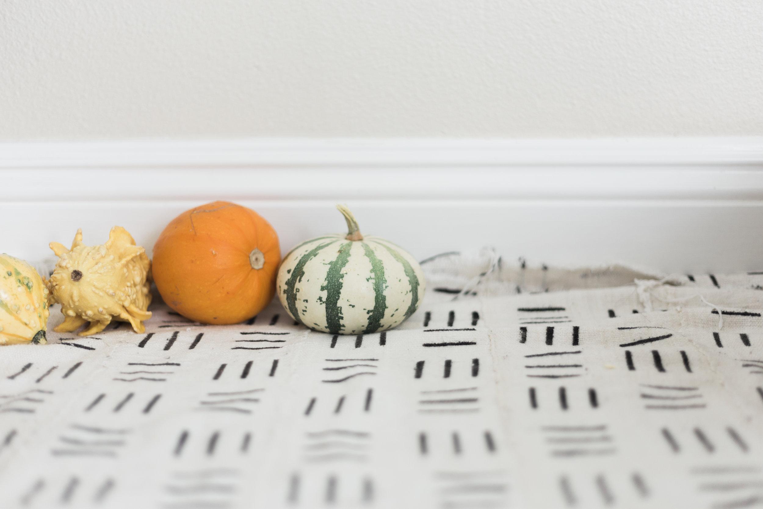 ^^^she lined those pumpkins up!