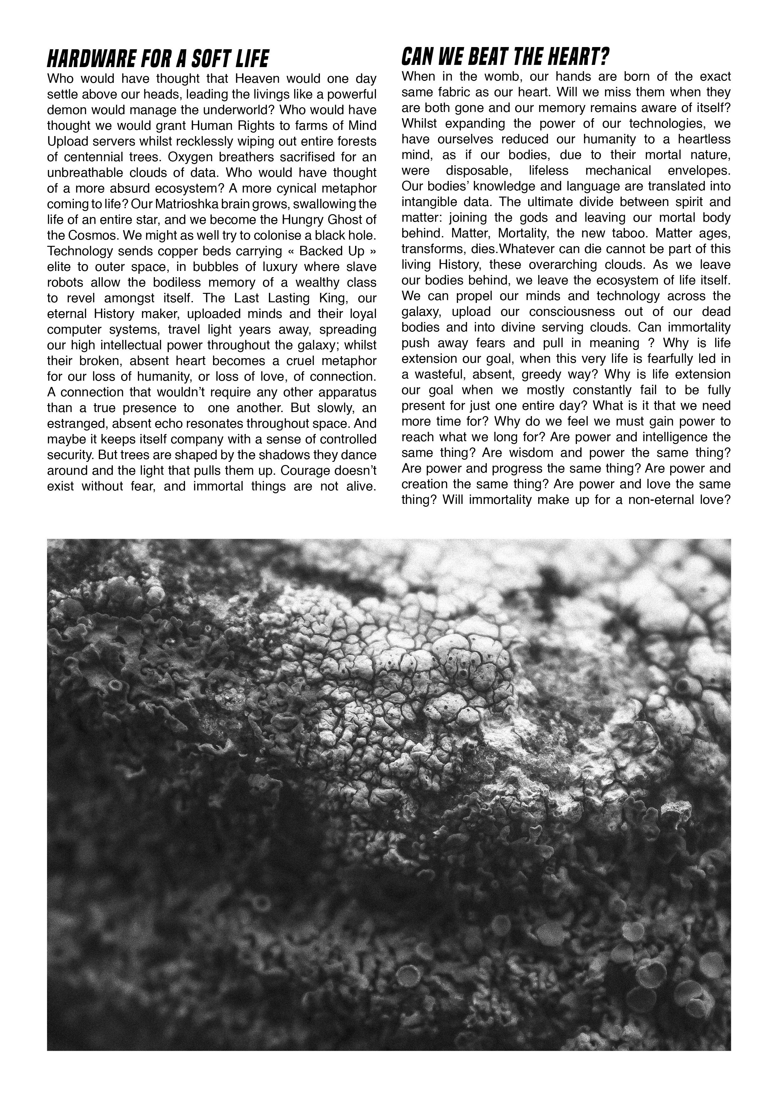 Fanzine6.jpg