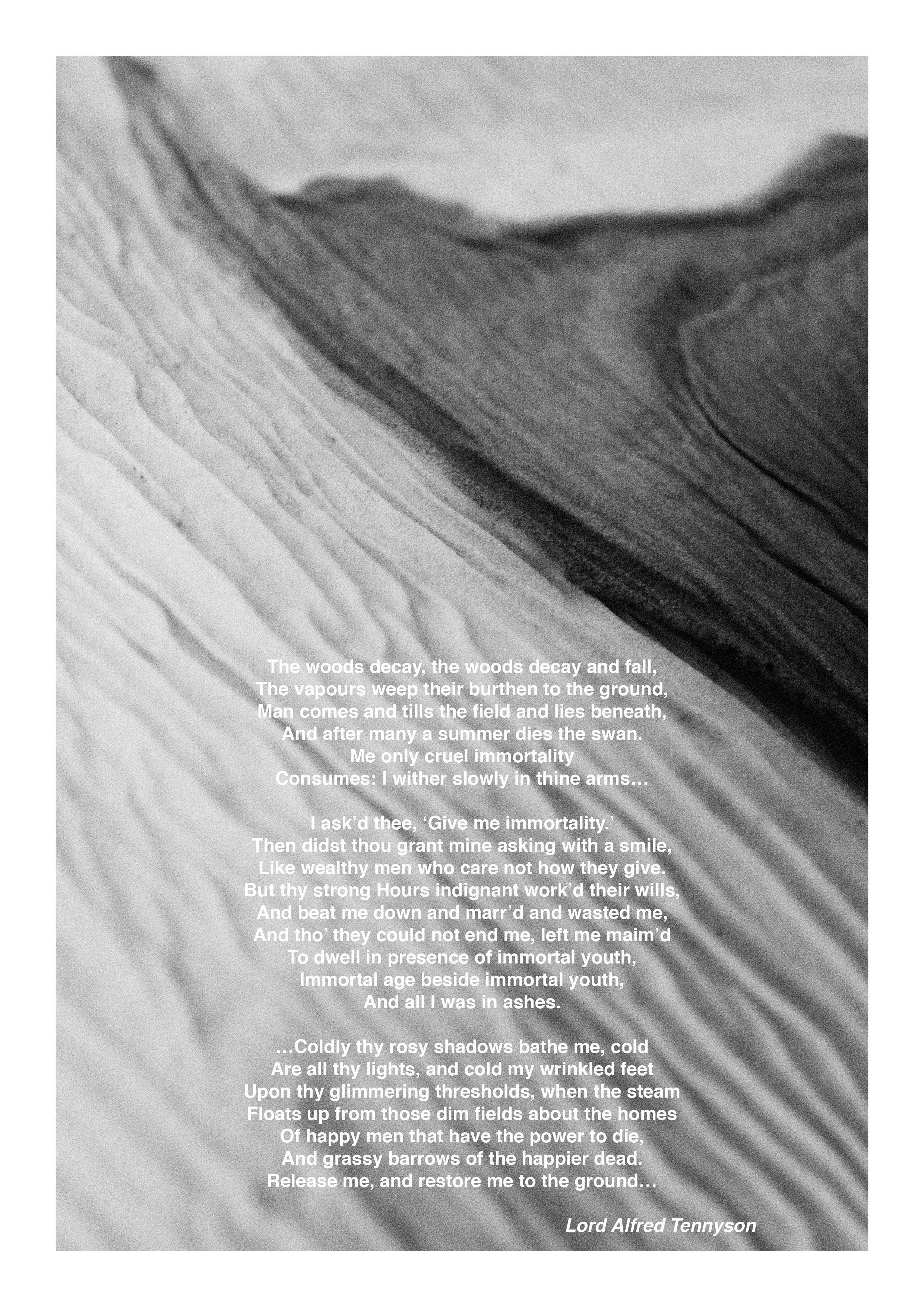 Fanzine12.jpg