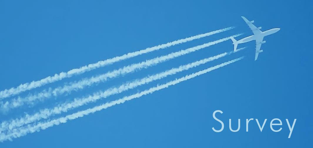 Aviation English Survey