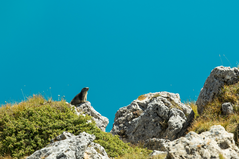 En plein jour le lac de Moiry brille en turquoise... et non, ce n'est pas le ciel photoshopé!
