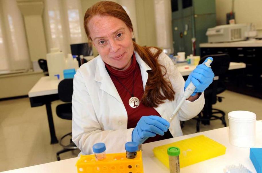 Katy Gonder,  Associate Professor and director of the Bioko Biodiversity Protection Program.