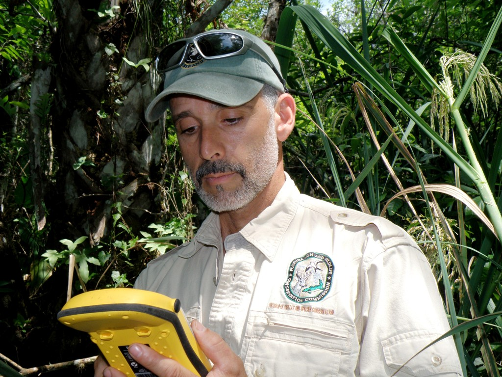Dennis Giardina