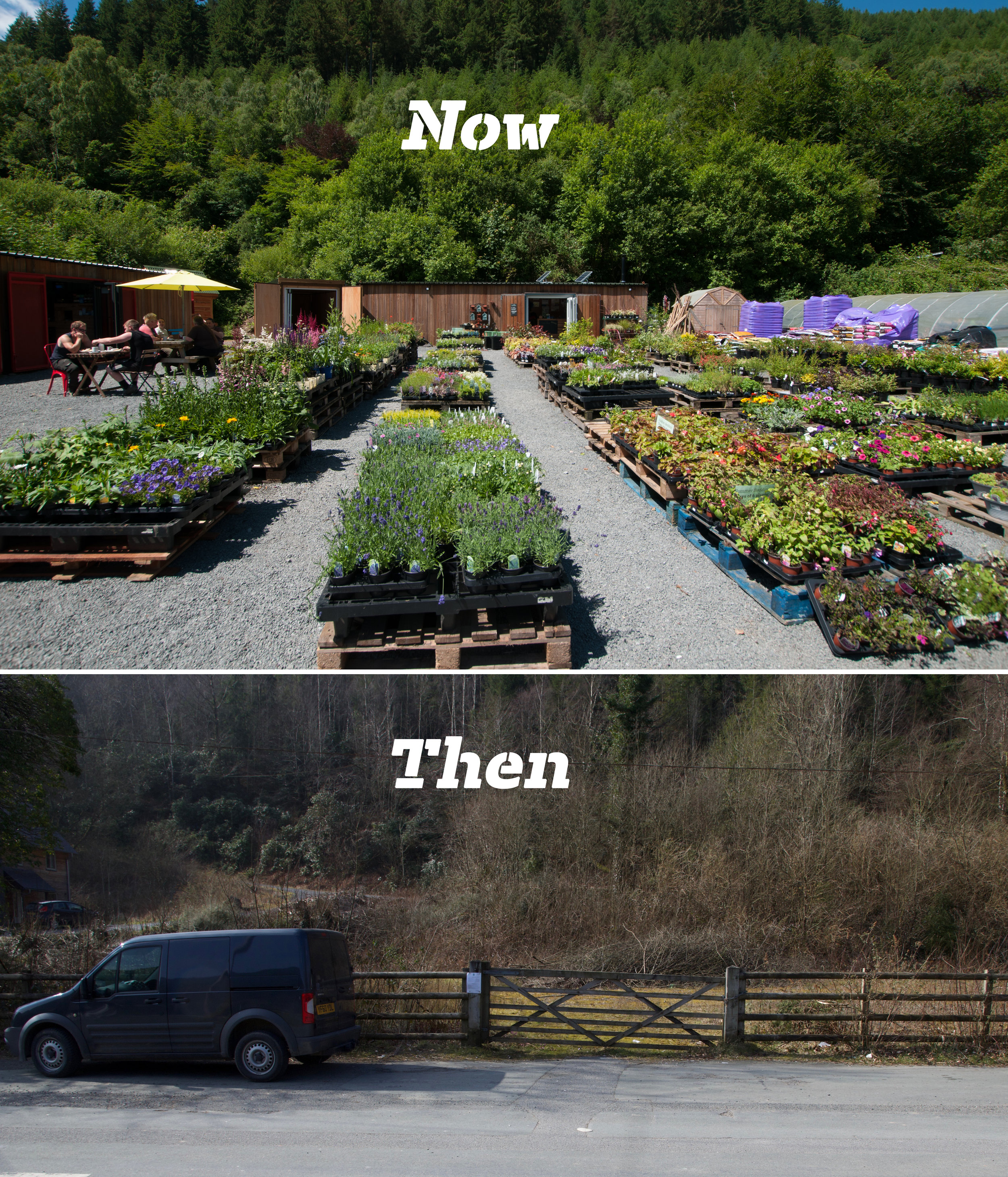 Our story so far … - Camlan Garden Centre opened in the summer of 2016; and the Farm Shop opened in the summer of 2018.Lisa and Ian Allsop grasped the opportunity to transform an unused plot of land just off the A470 in Dinas Mawddwy into a much-needed local garden centre and farm shop. The farm shop uses both main electric and solar power to provide lighting; as well as power for a water pump for use with rainwater from large storage tanks for irrigation. The shops are converted shipping containers, clad in larch to blend in with the surrounding landscape.The new farm shop is run by Ian Allsop, who has retired from gardening to indulge his love of cheese! The shop stocks a wide choice of Welsh and British cheeses, fresh locally produced bread as well as lots of tasty Welsh produce from companies including Halen Mon, Pembrokeshire Beachfood Company, and Wickedly Welsh Chocolate. More recently the farm shop has been able to stock locally farmed pork from Neuadd Fach Baconry and Cig Oen Mawddwy lamb.The garden centre, run by Lisa Allsop, stocks Welsh and British grown plants such as Welsh variety fruit trees and hardy shrubs, alpines and perennials, all well suited to the climate in this part of Wales; along with a selection of more traditional plants such as summer bedding plants.There is a separately owned cafe on-site.