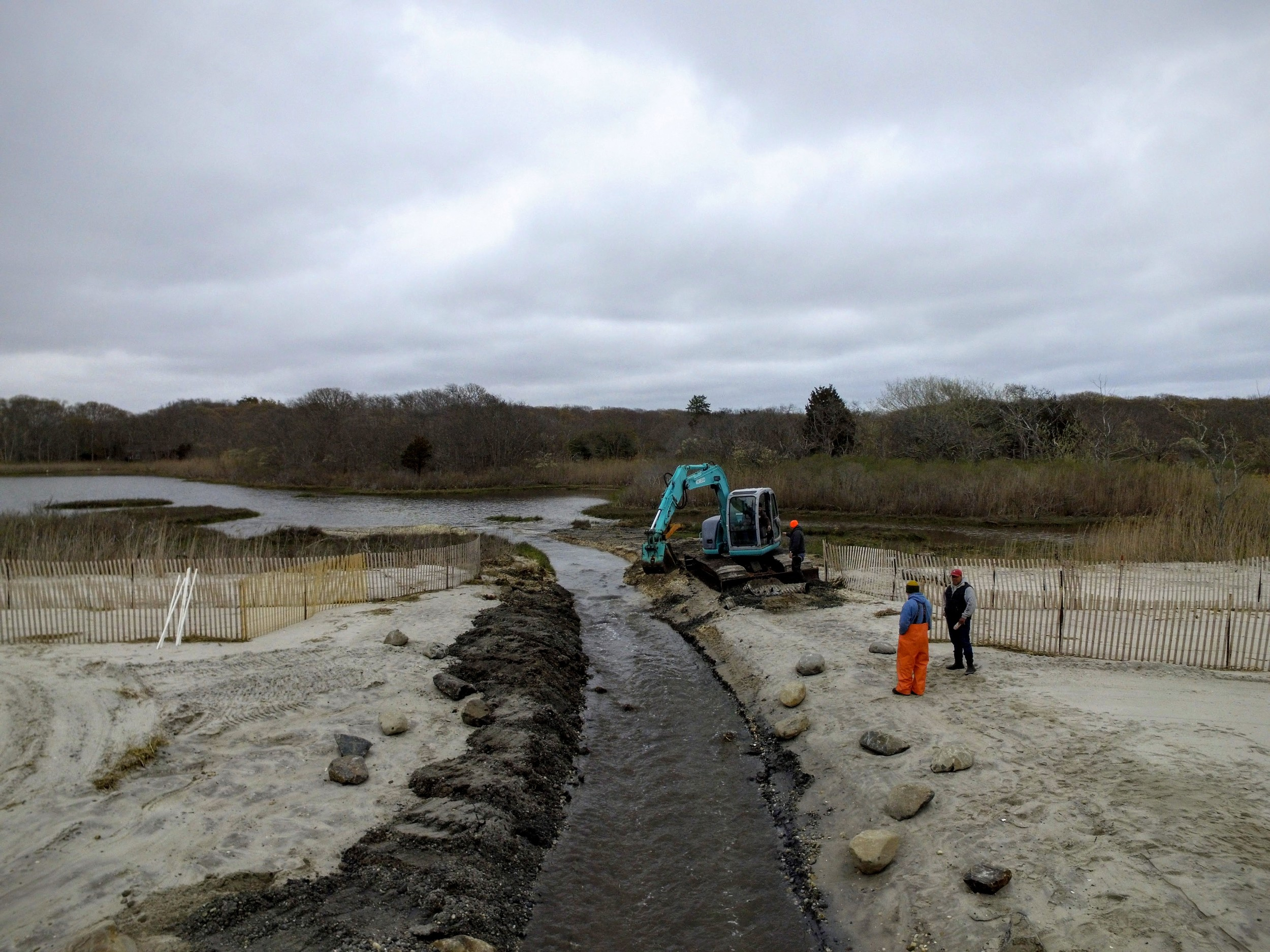 Salt Marsh Modification