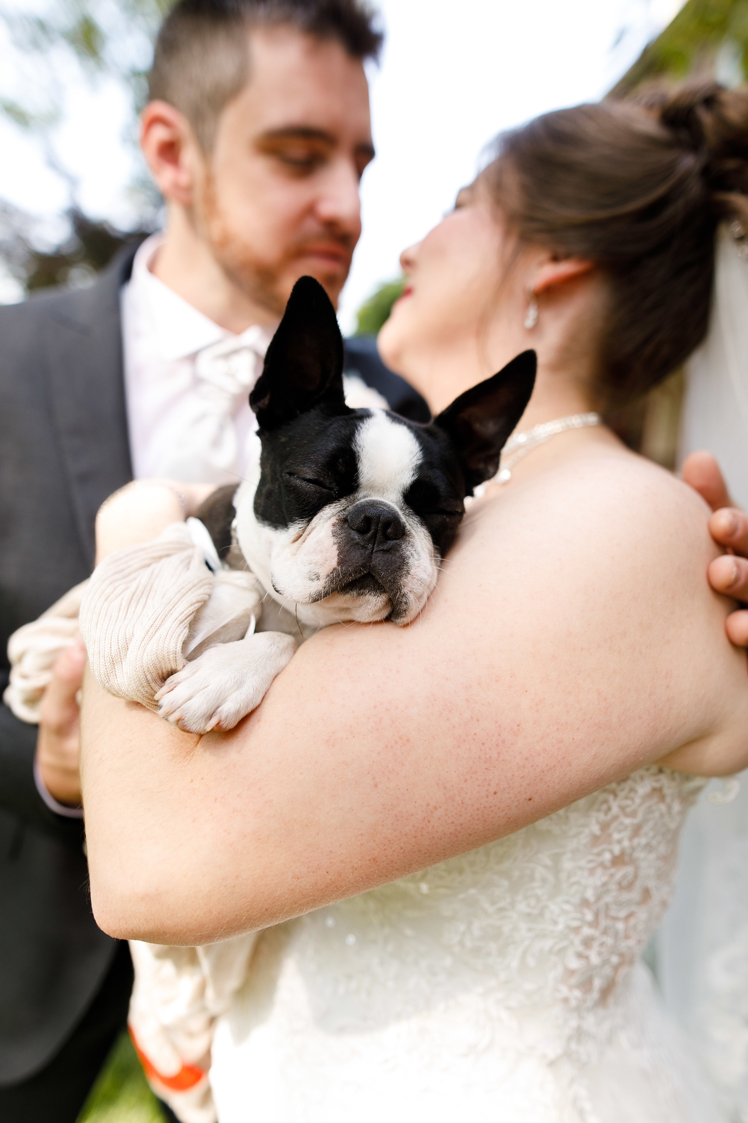 Wedding at Joseph Ambler In Bucks County PA26.jpg