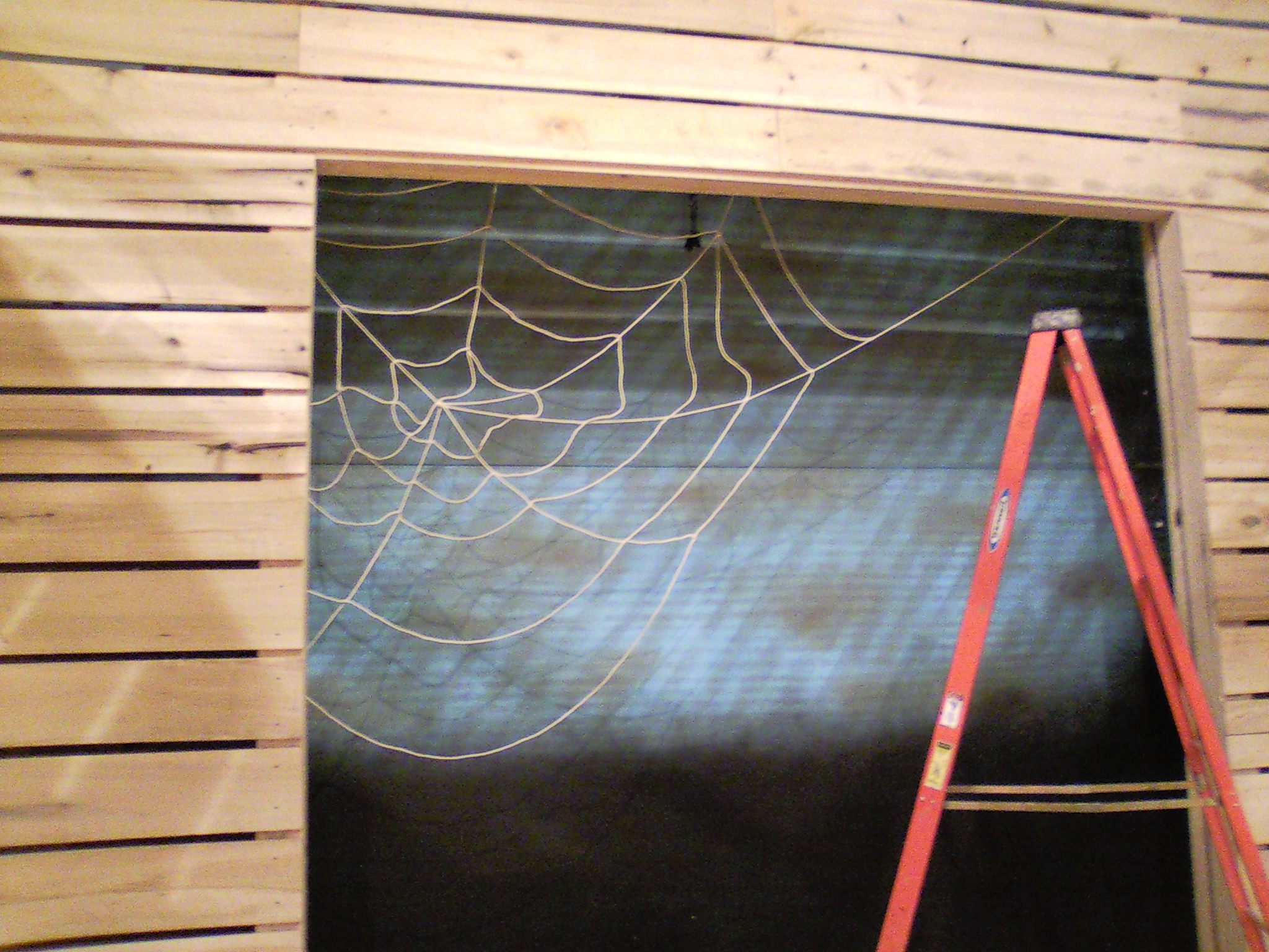 The actual webbing of  Charlotte's Web , which I produced.