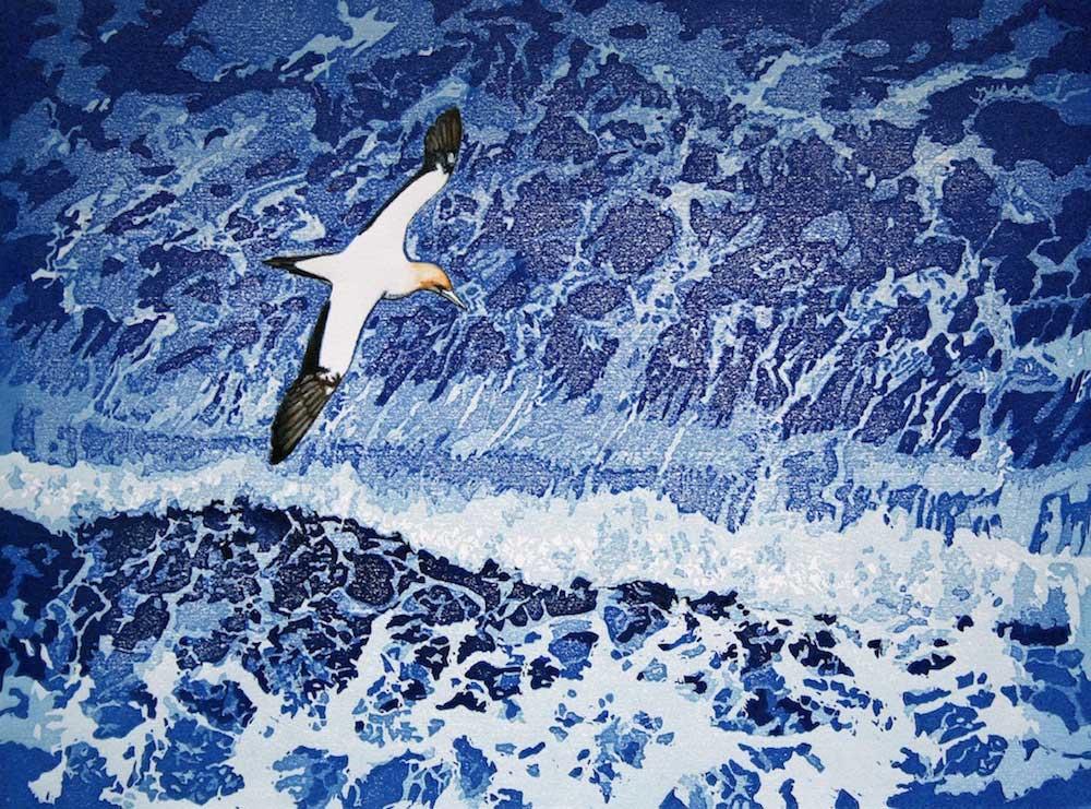 SEA & RIVER BIRDS