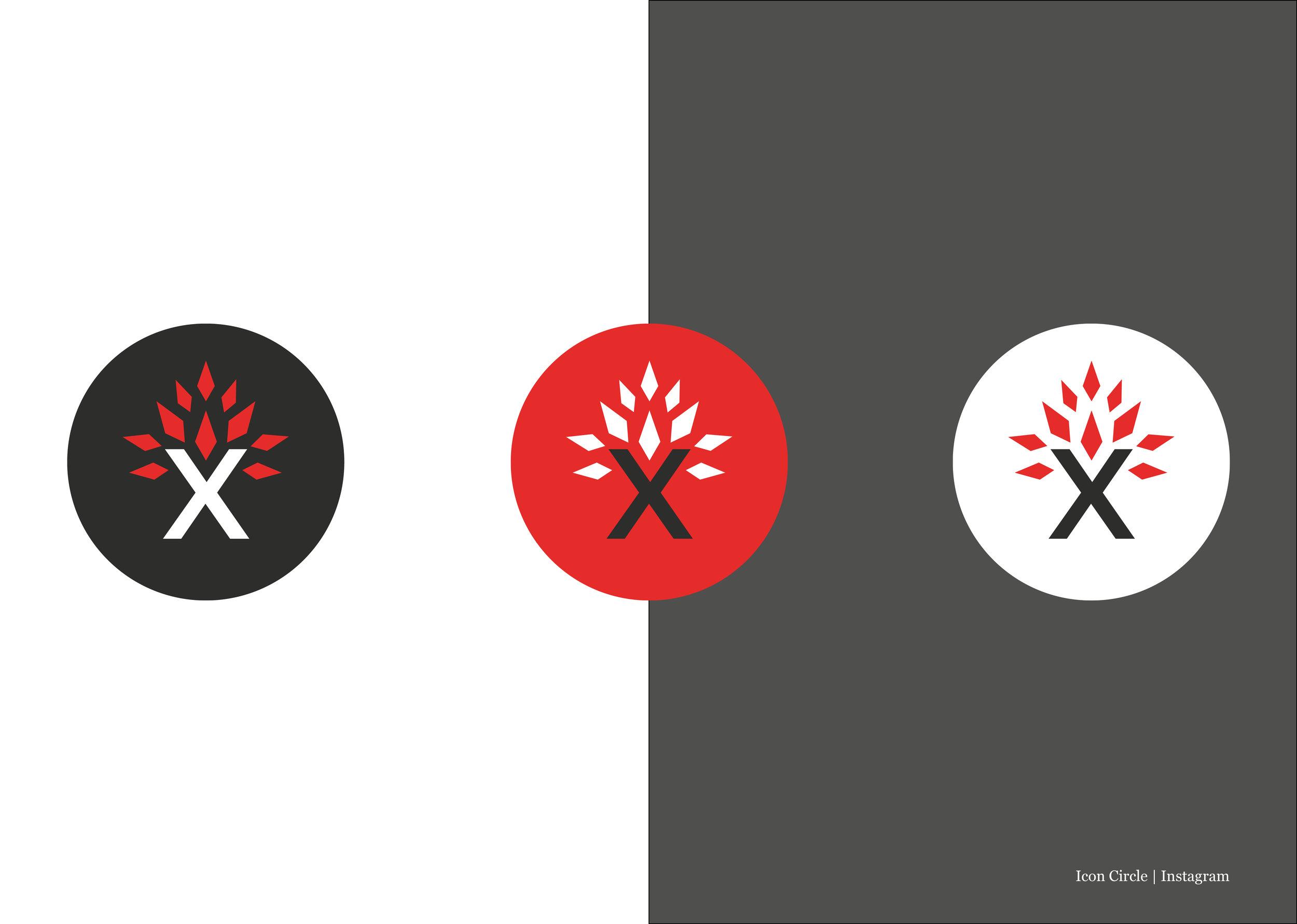 Logo_Specification_Saxon13.jpg