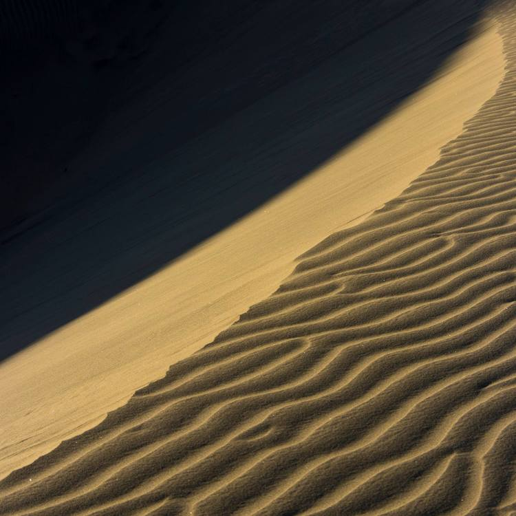 Photography workshop at the dunes in Playa del Inglés. Gran Canaria, Canary Islands.