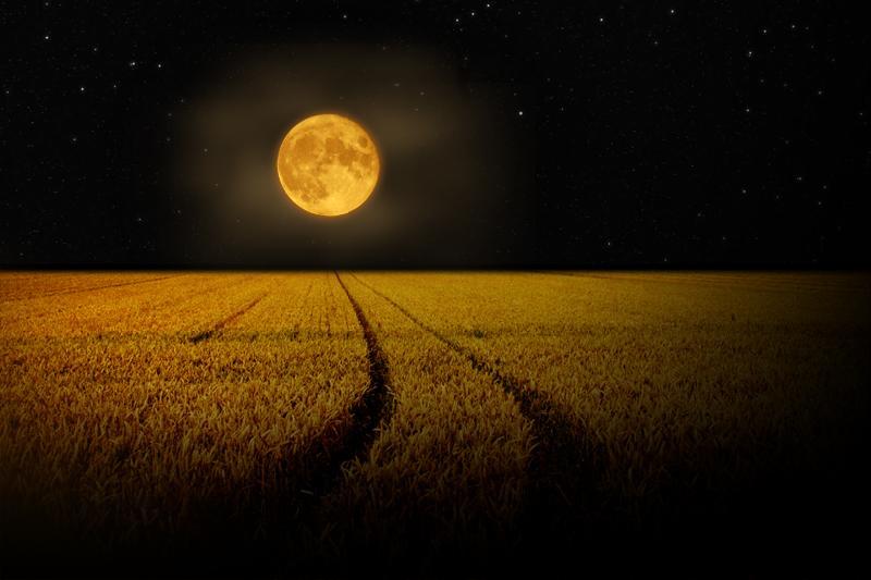 corn-moon1a (1).jpg