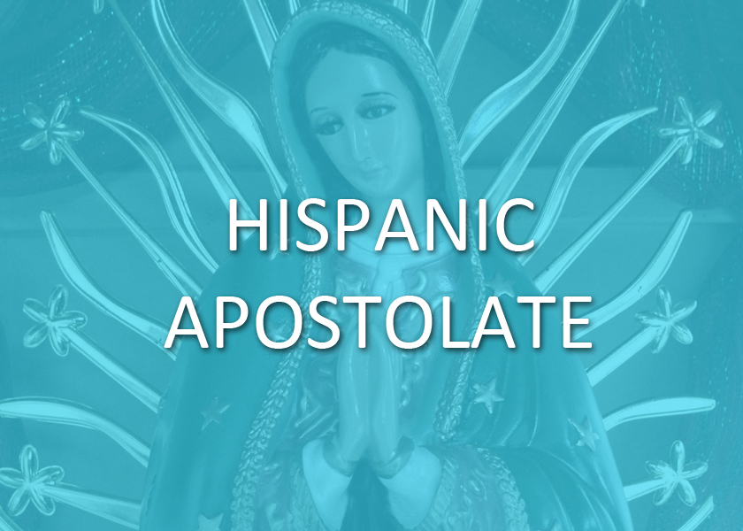 We are blessed to join with the  Hispanic Apostolate  of the Diocese of Baton Rouge in ministering to our growing Hispanic community. A monthly Mass in Spanish is celebrated at St. Ann along with other major feasts, quinceañeras, and Sacraments through the course of the year, to honor their rich heritage.