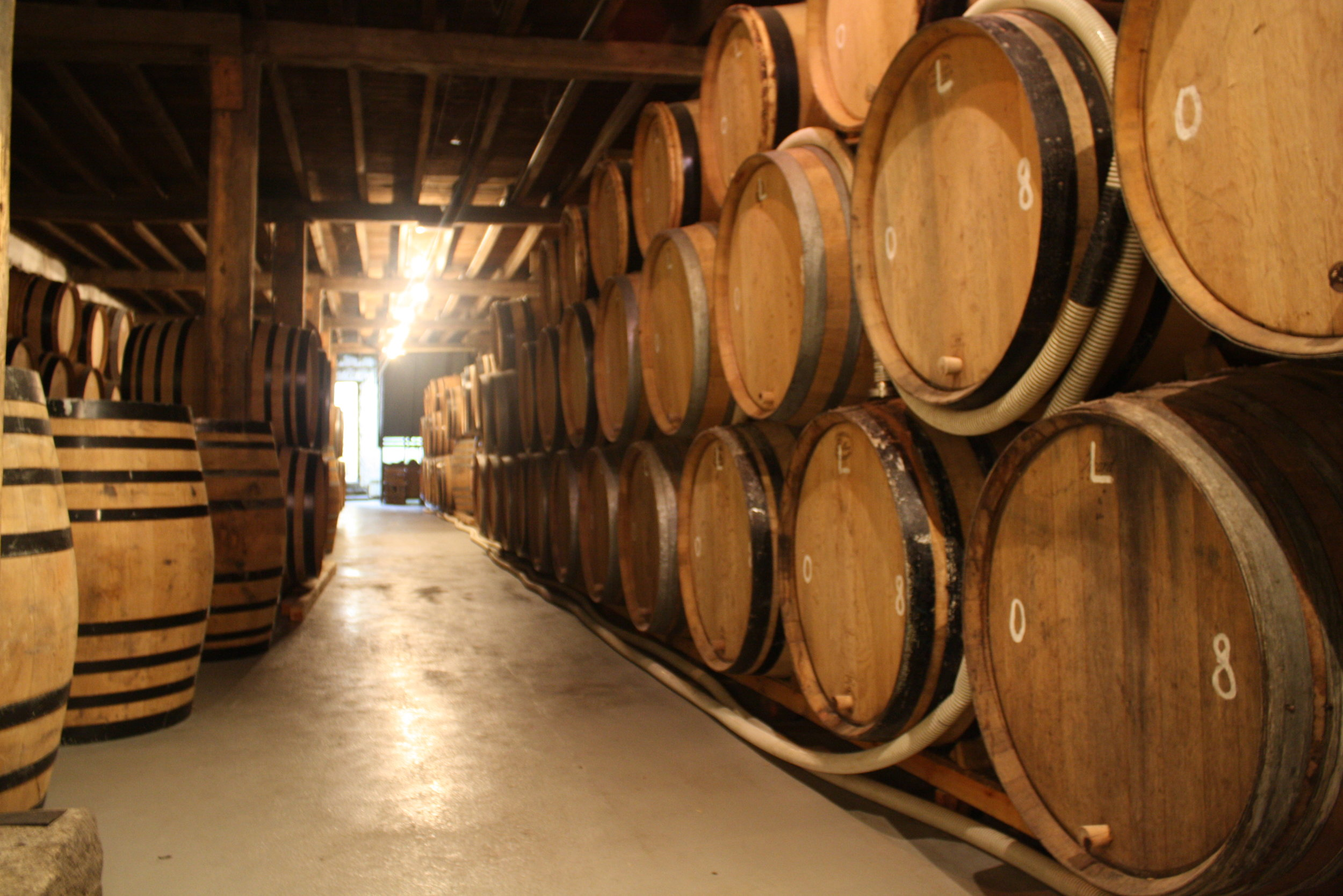 BRASSERIE CANTILLON     https://www.cantillon.be     Regular tours happening most days. Well worth a visit to see the magical process behind some of the great the sour beers, also get a drink after the tour! Only a 10 minute walk from Moeder Lambic but get directions. A must visit in Brussels!