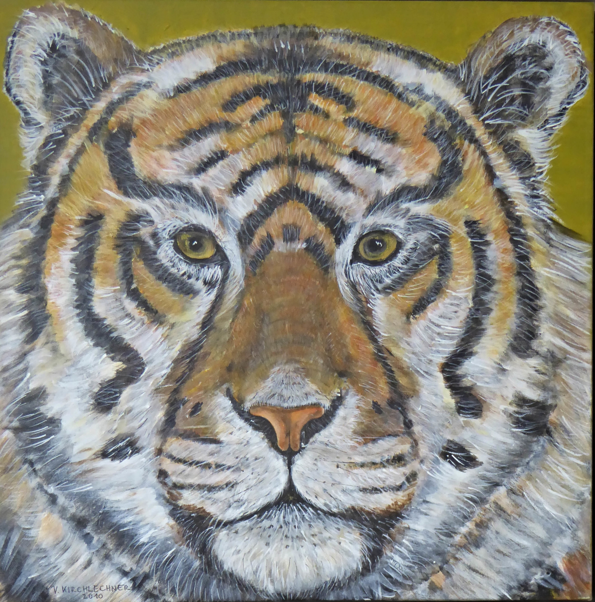 TARAN, DER TIGER