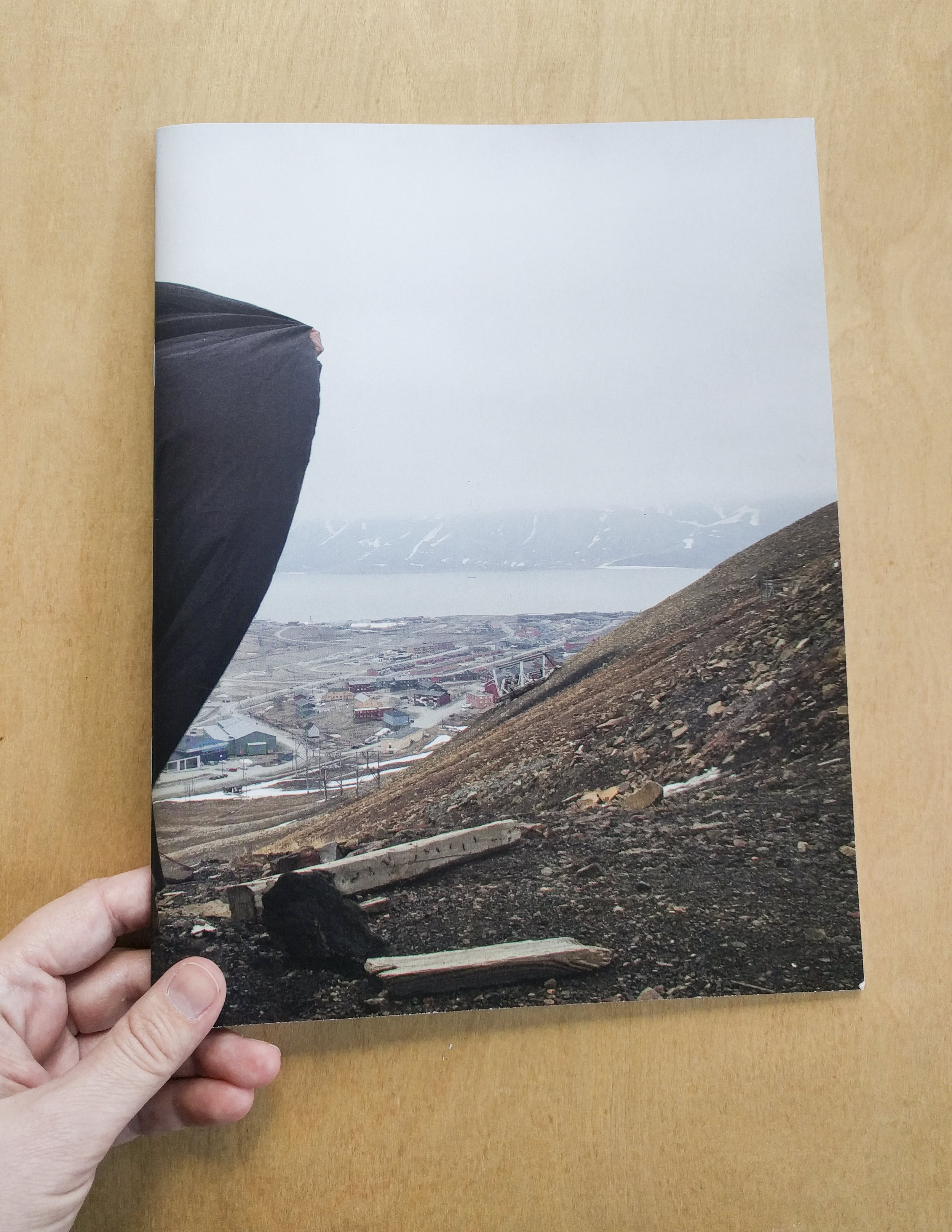 """Artist book/catalog   """"The shore is still in the sea"""" exhibition at Commonwealth & Council, Los Angeles,  January, 2012   Softbound, 44 pp., offset, 8.75 x 10.5 in.,  Published by Commonwealth & Council,  $20   Order This Book   PDF Version"""