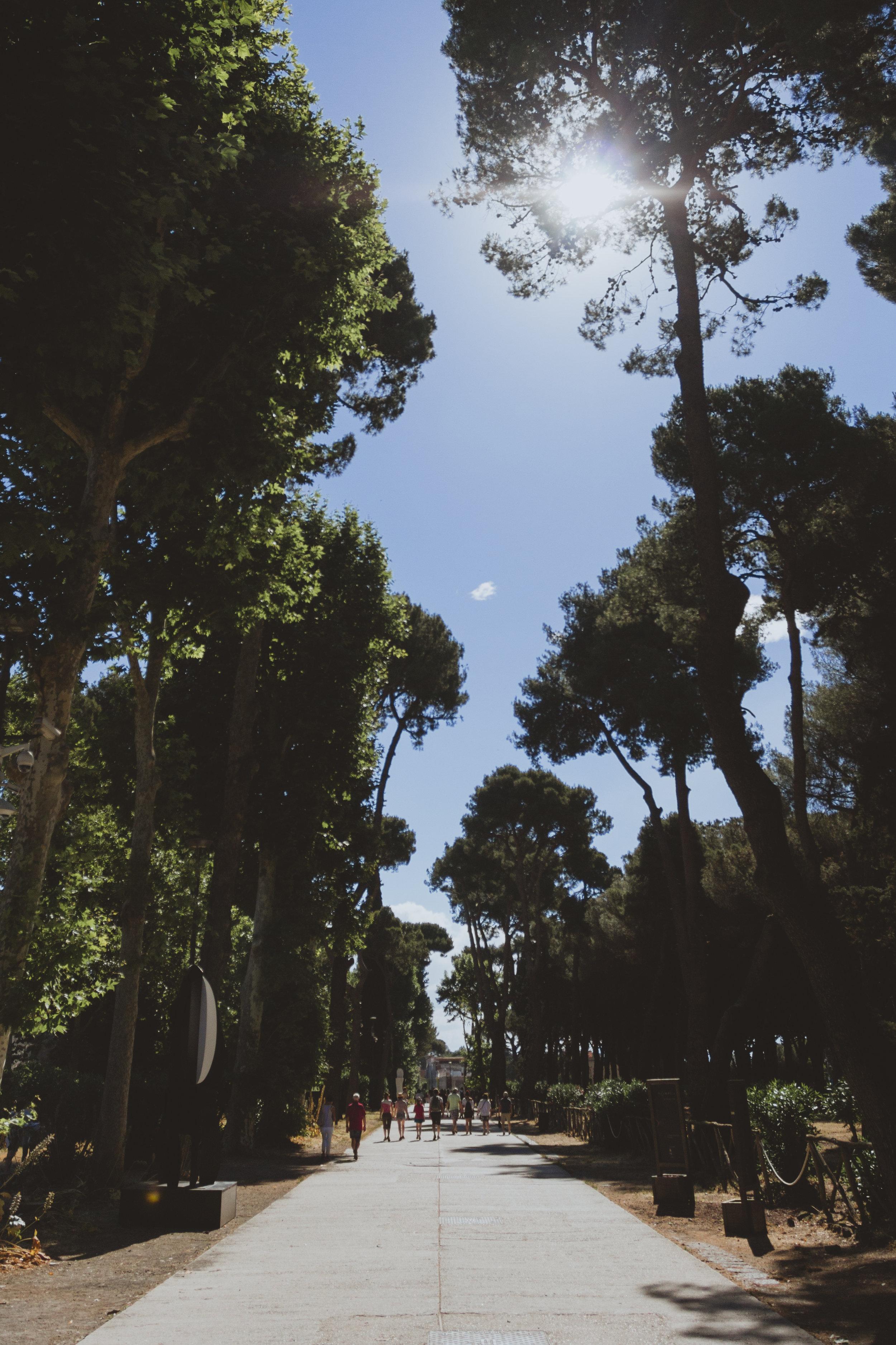 Day 4 - Pompeii (3 of 81).jpg