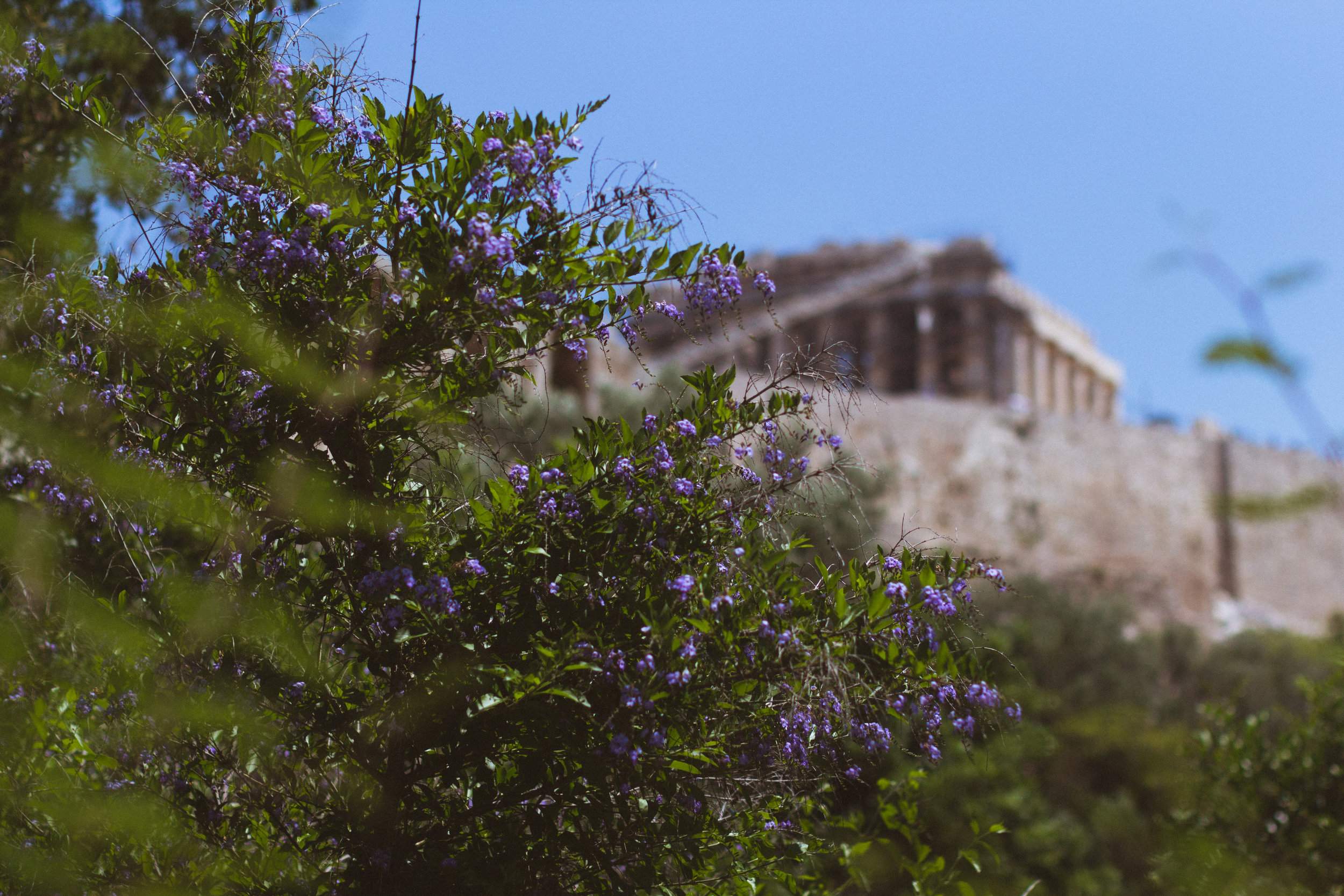 Day 7 - Athens (43 of 57).jpg