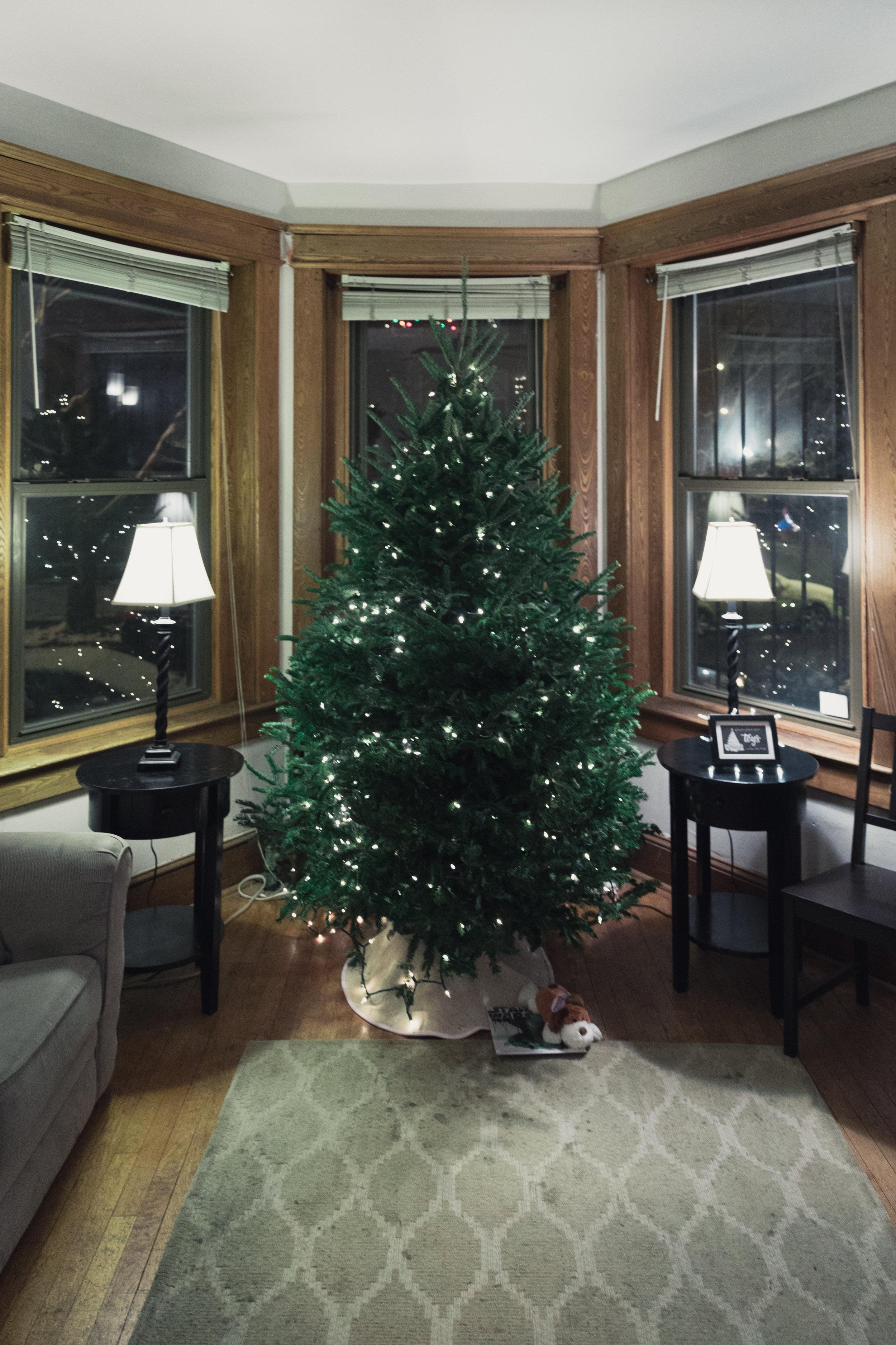 Classy Christmas Edits (7 of 167).jpg