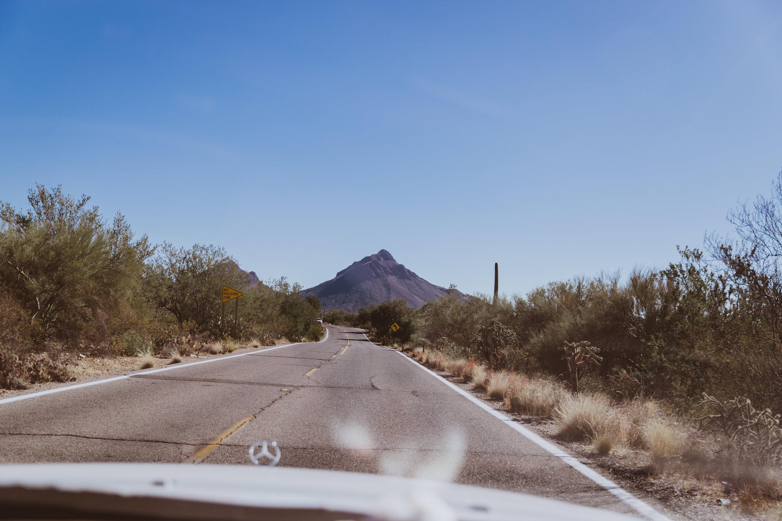Saguaro Edits (15 of 160).jpg