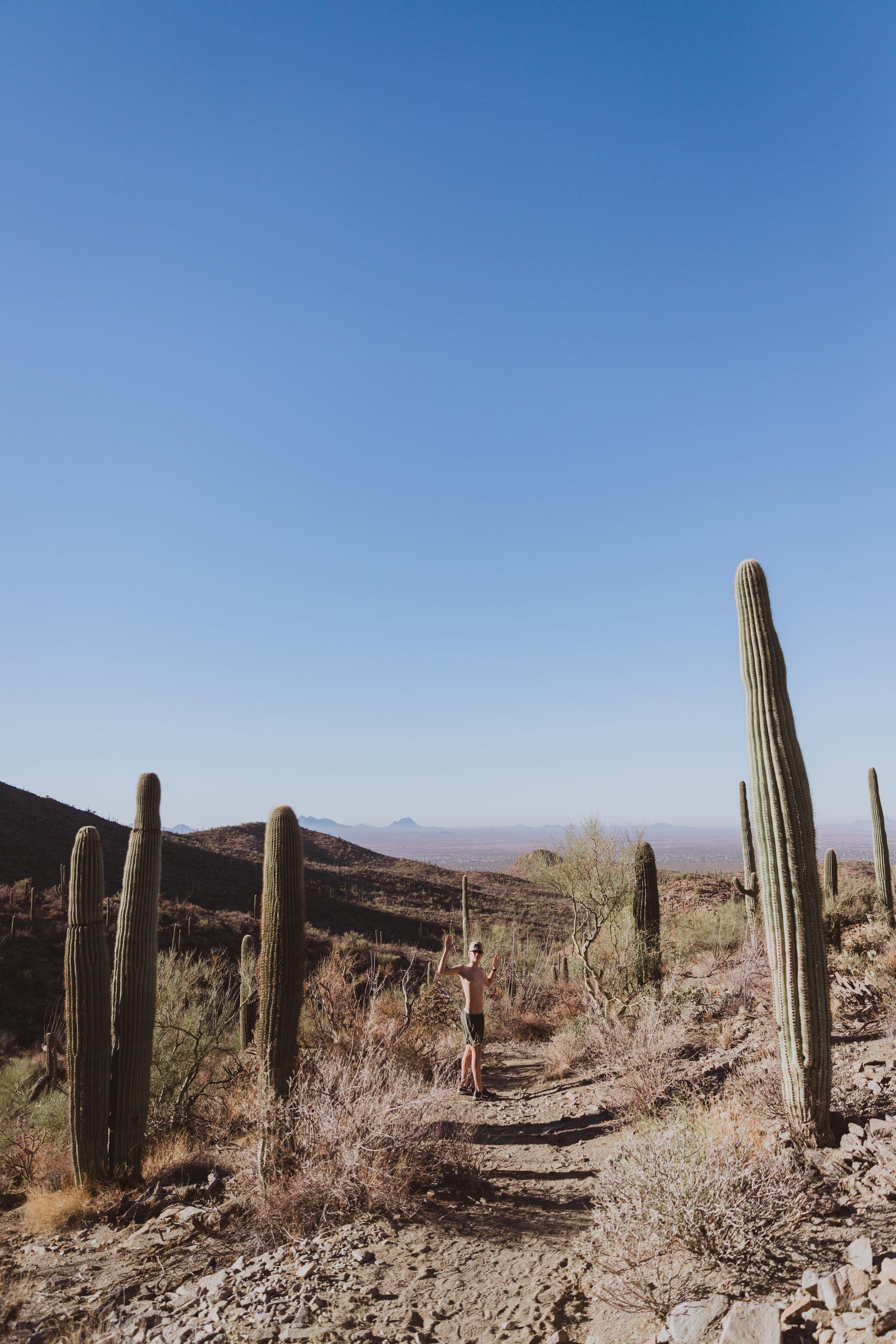 Saguaro Edits (121 of 160).jpg