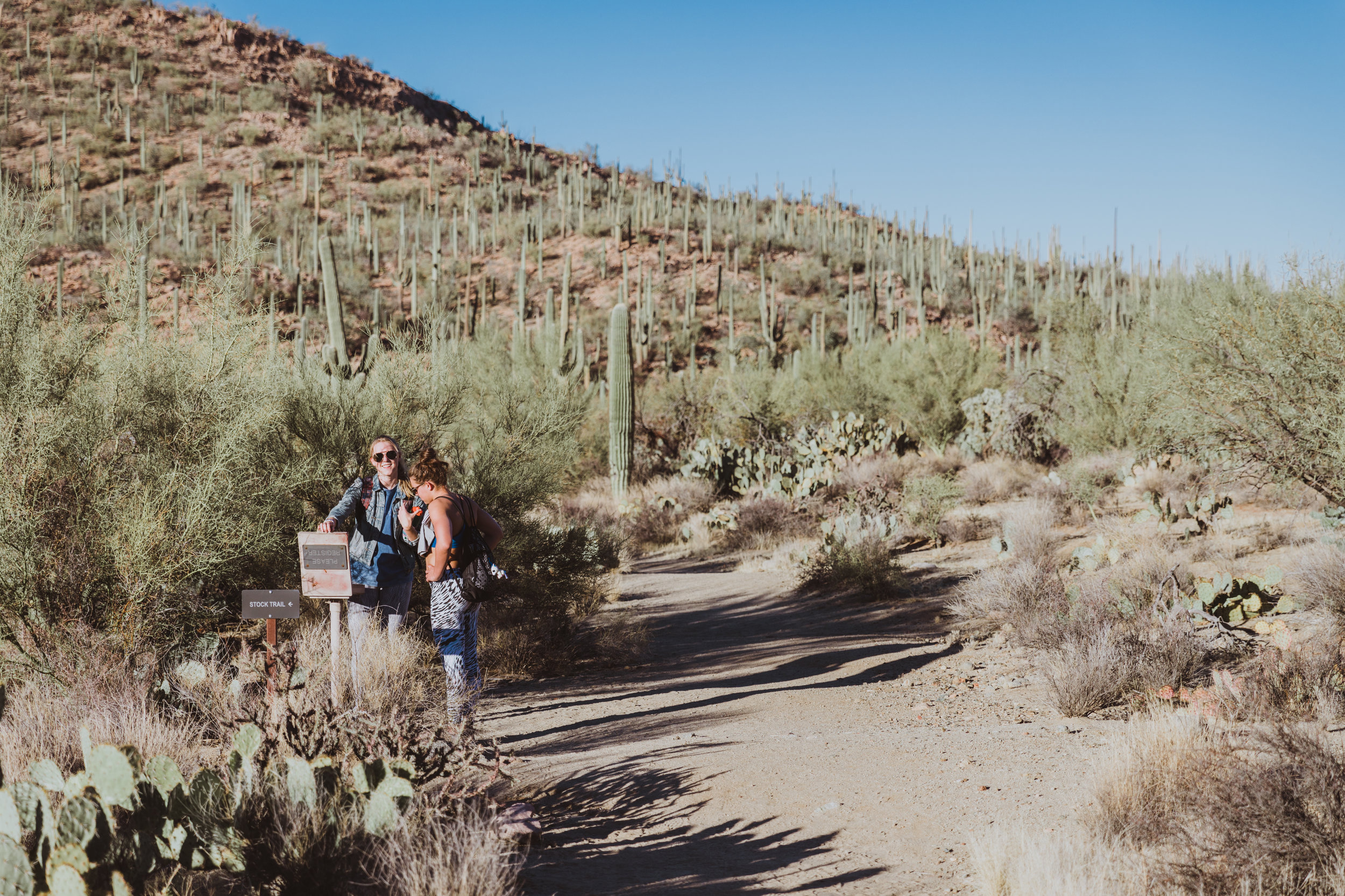 Saguaro Edits (144 of 160).jpg
