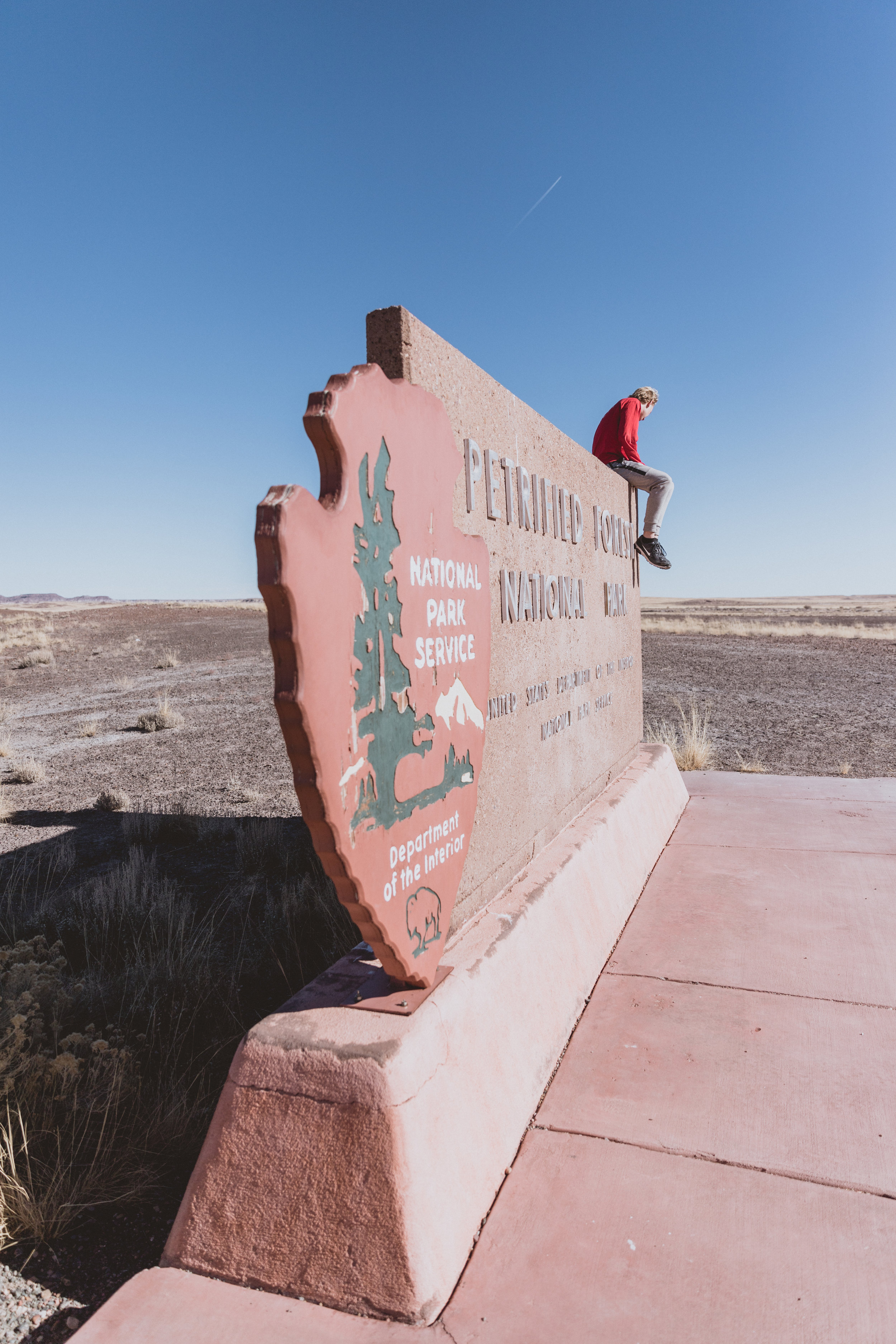 Petrified Forest (10 of 149).jpg