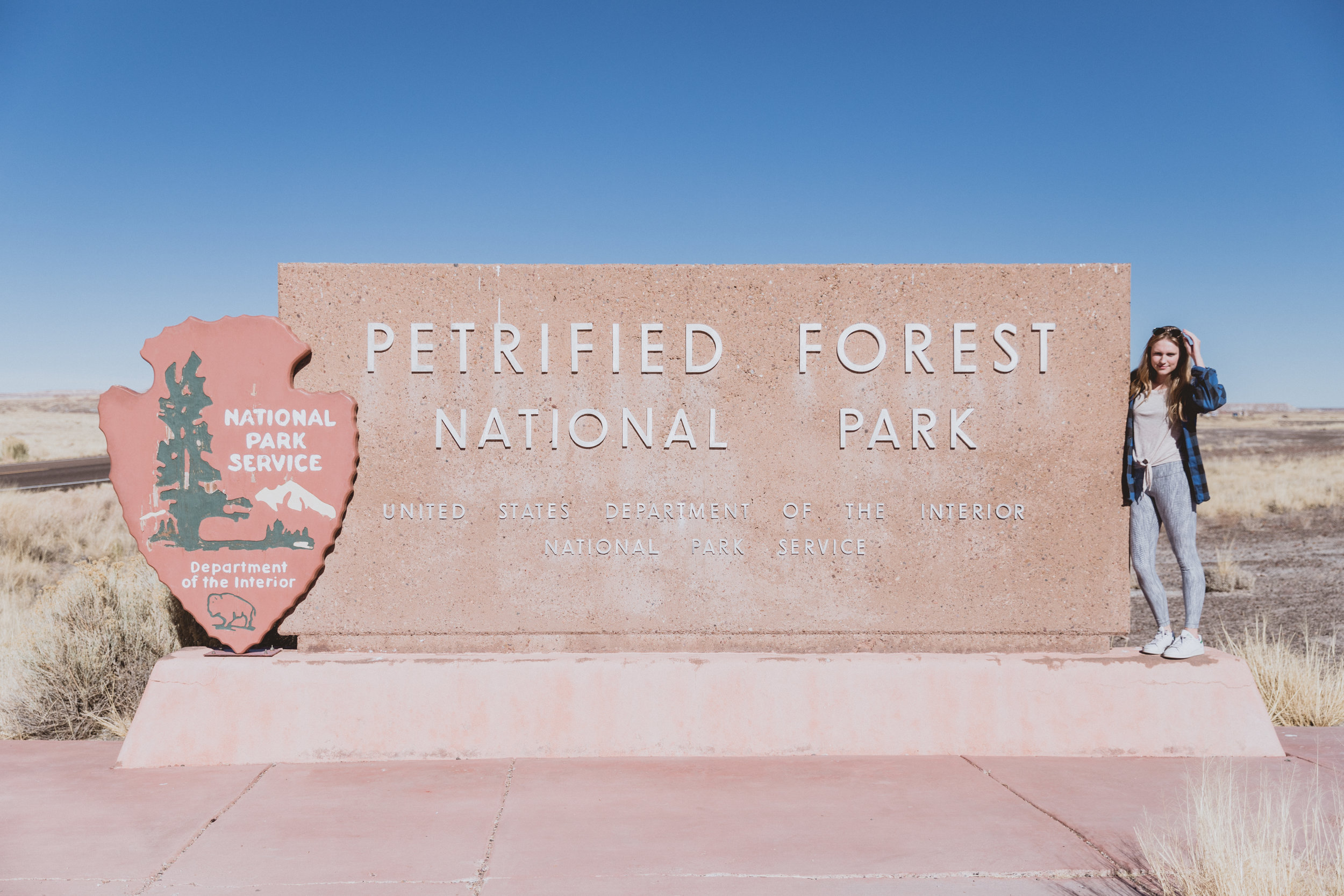 Petrified Forest (3 of 149).jpg