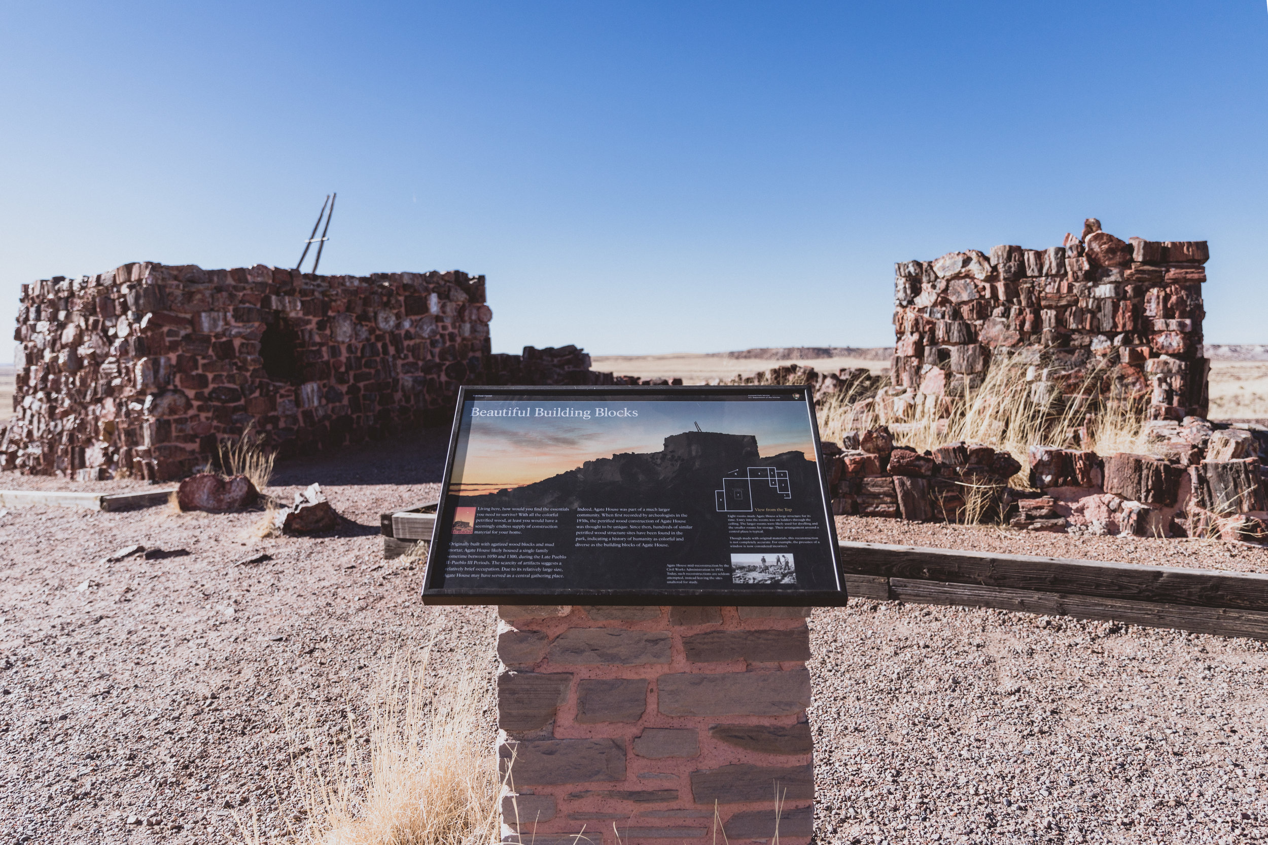 Petrified Forest (39 of 149).jpg