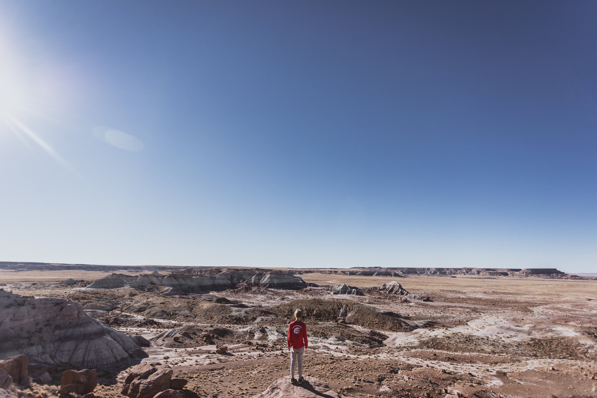Petrified Forest (50 of 149).jpg