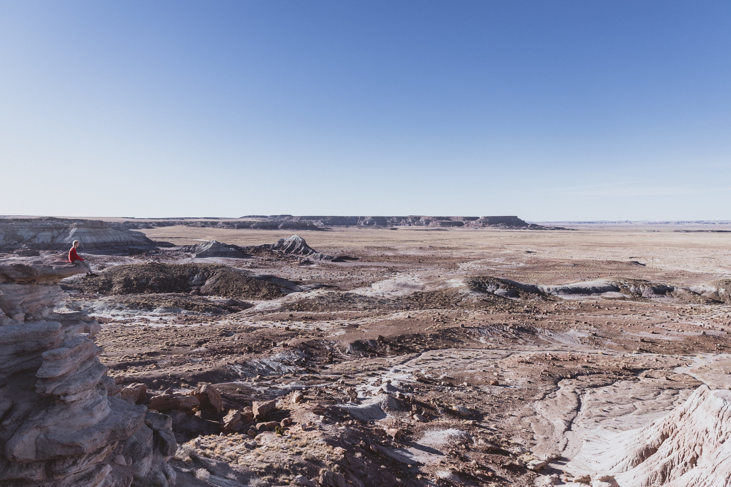 Petrified Forest (84 of 149).jpg