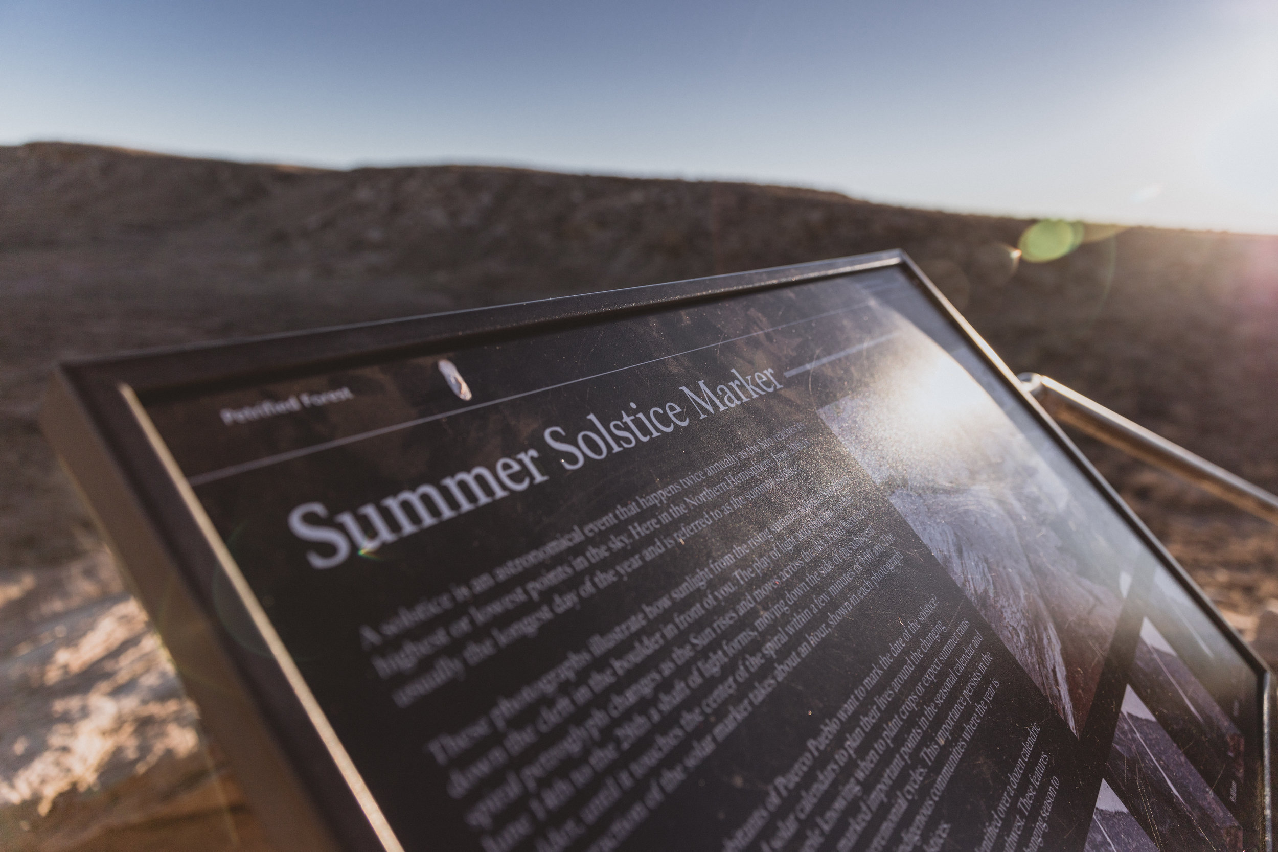 Petrified Forest (121 of 149).jpg