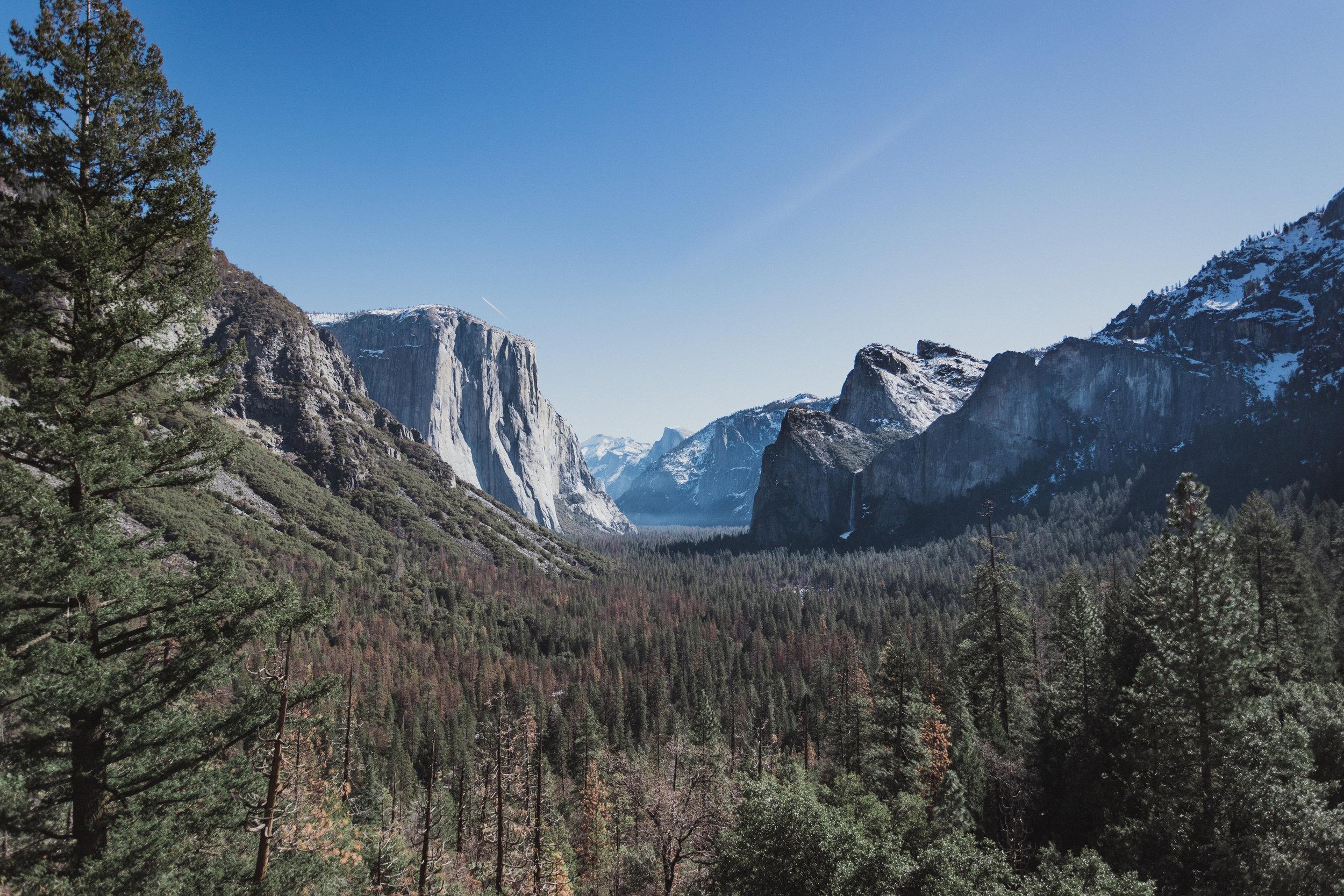 Yosemite Edits (3 of 215).jpg