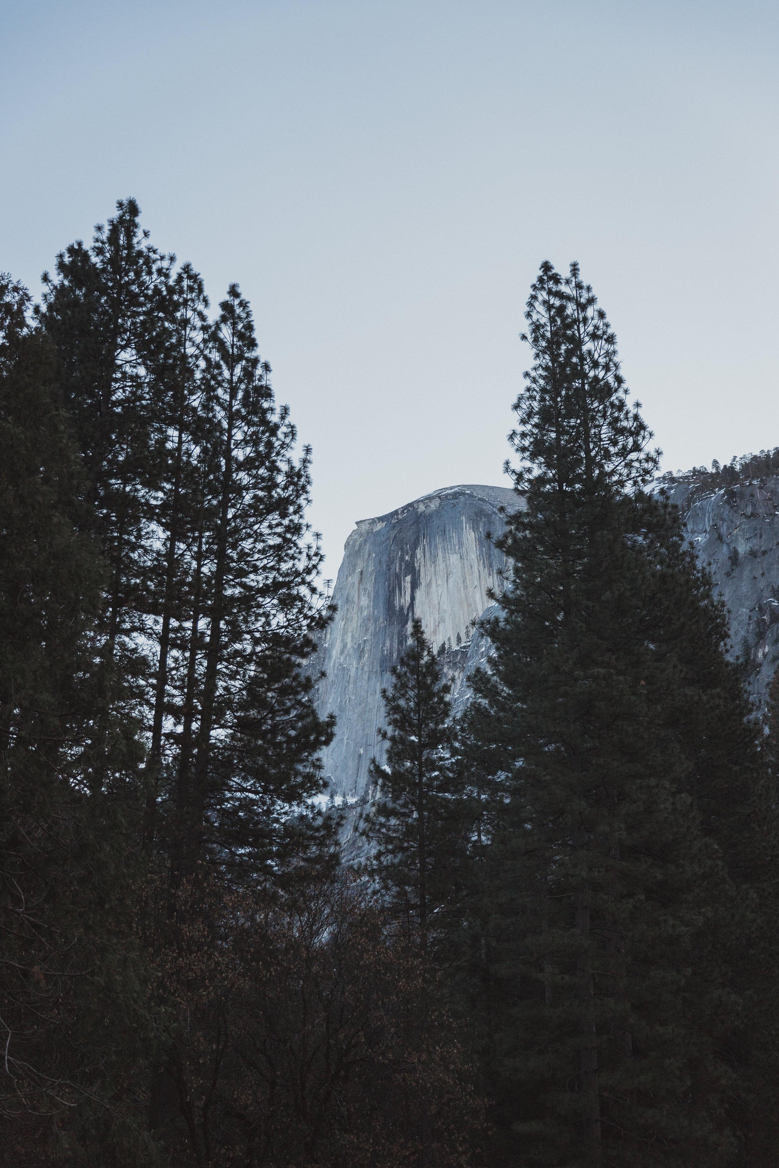 Yosemite Edits (119 of 215).jpg