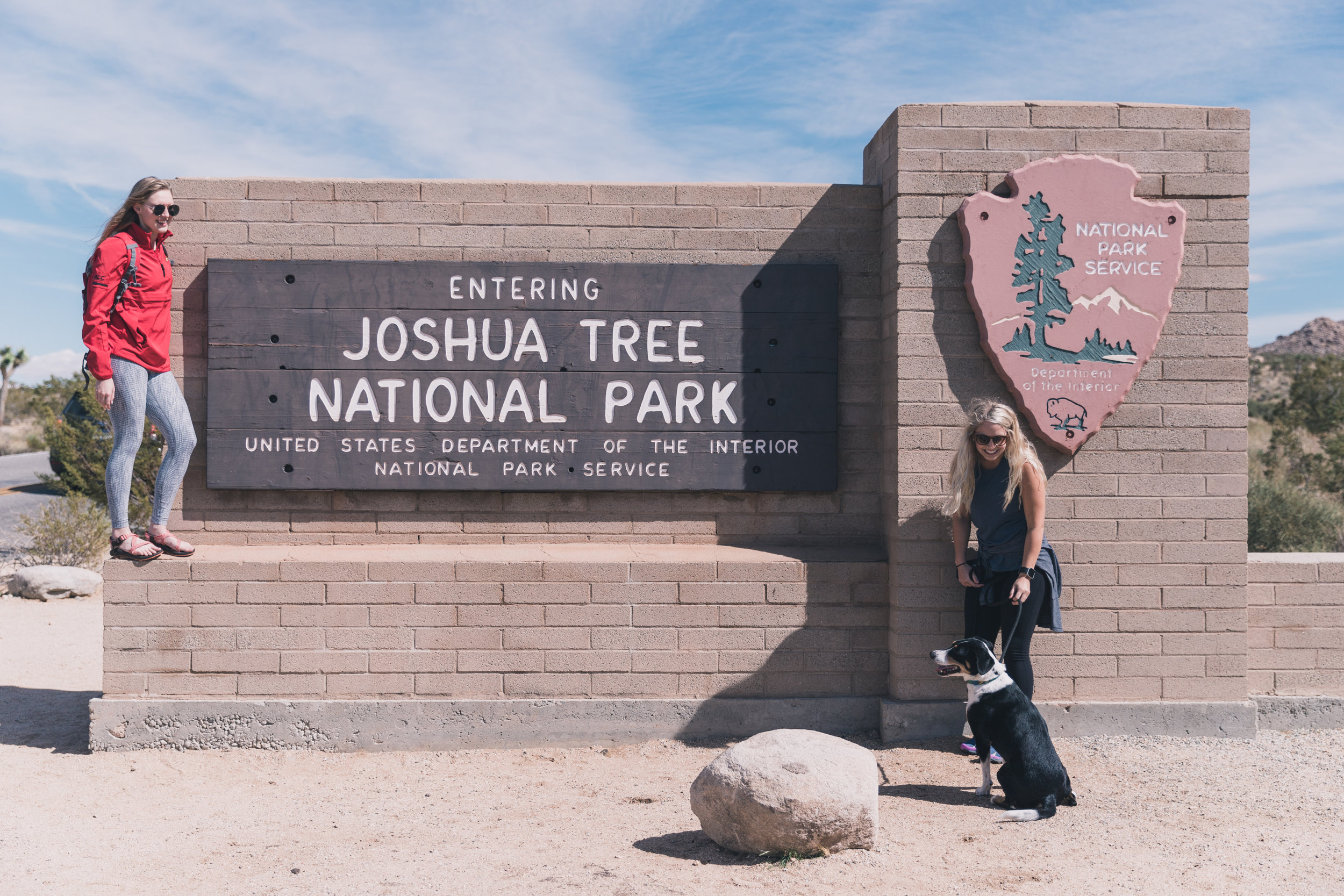 Joshua Tree Edits (7 of 156).jpg