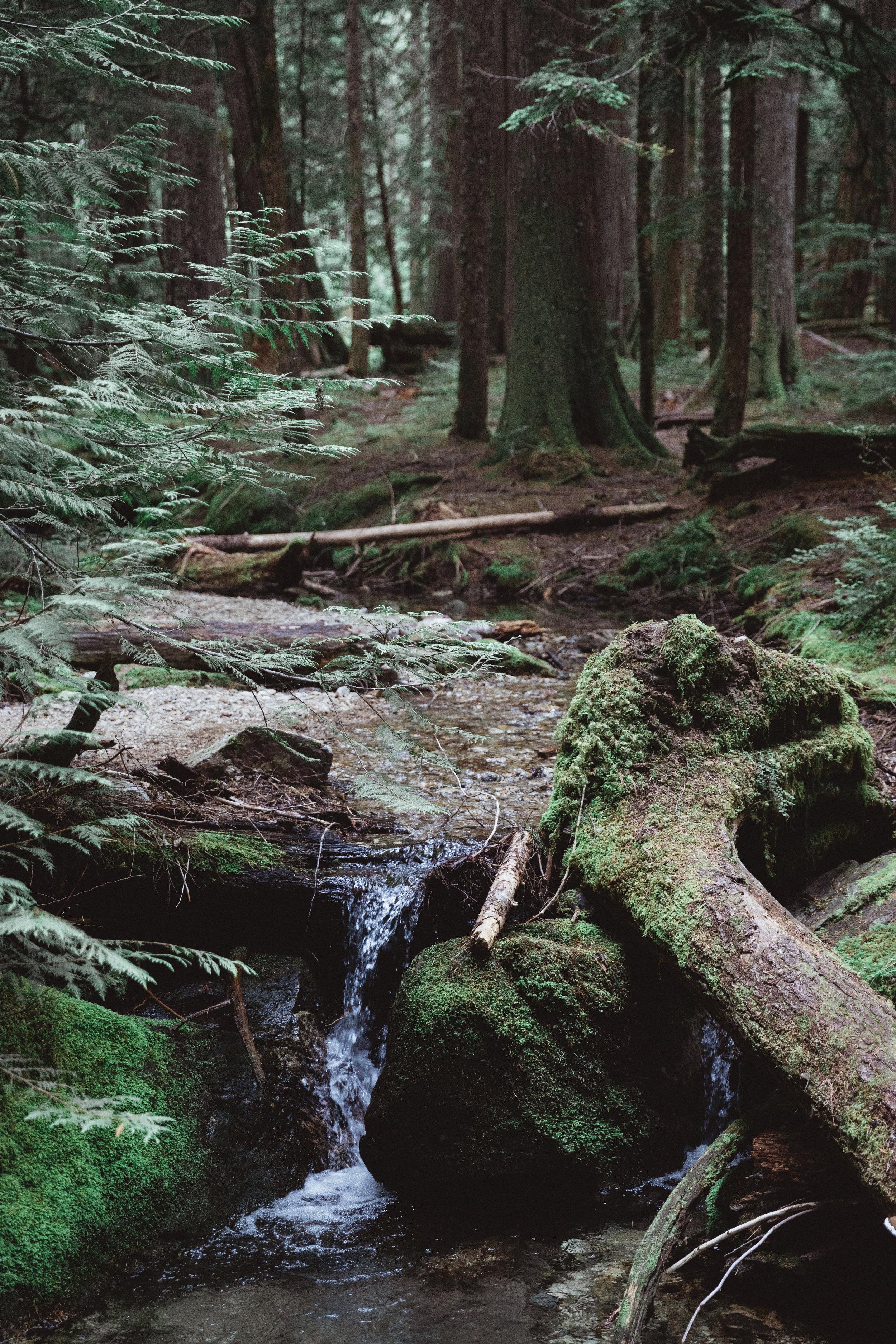 North Cascades Edits-18.jpg