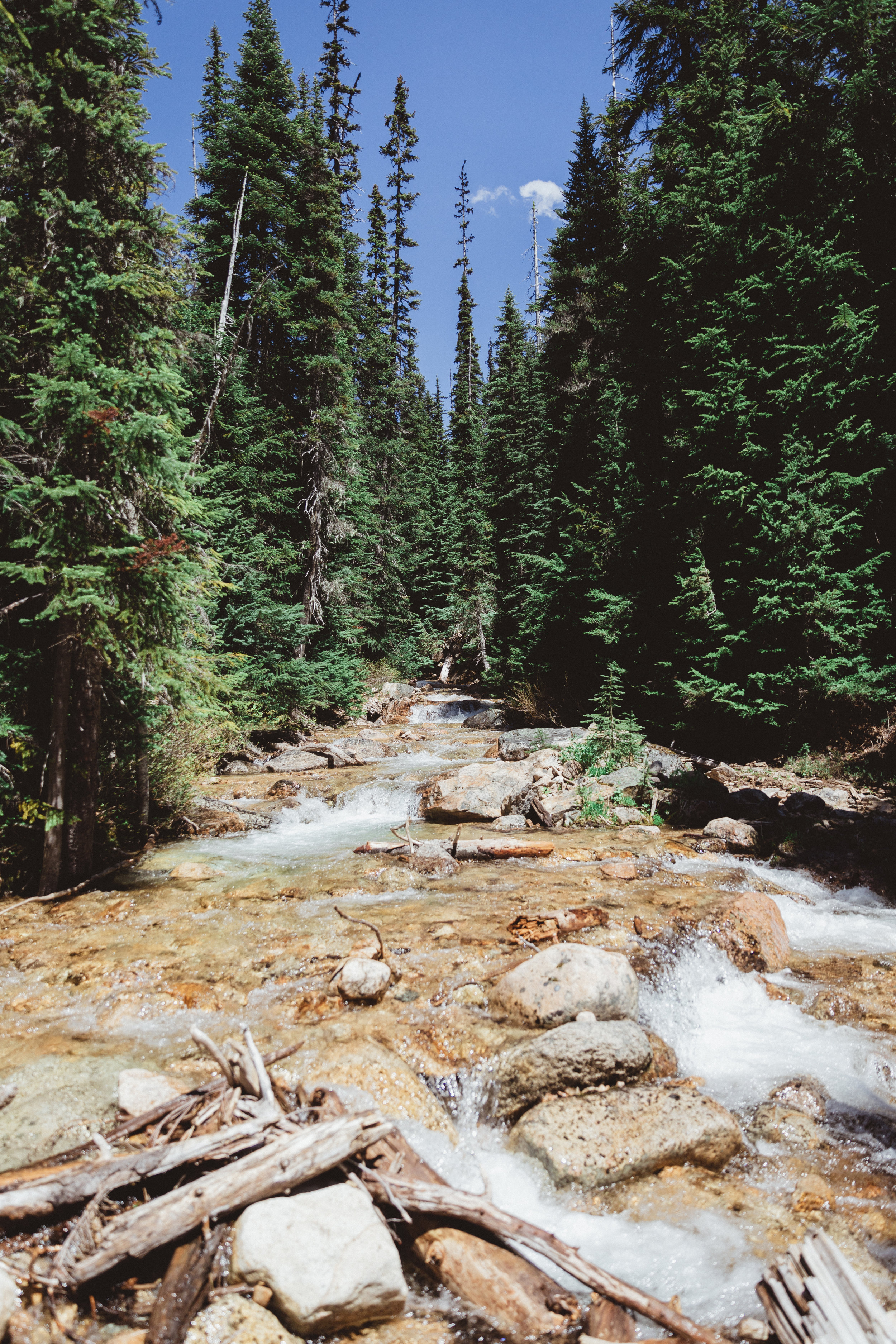 North Cascades Edits-67.jpg