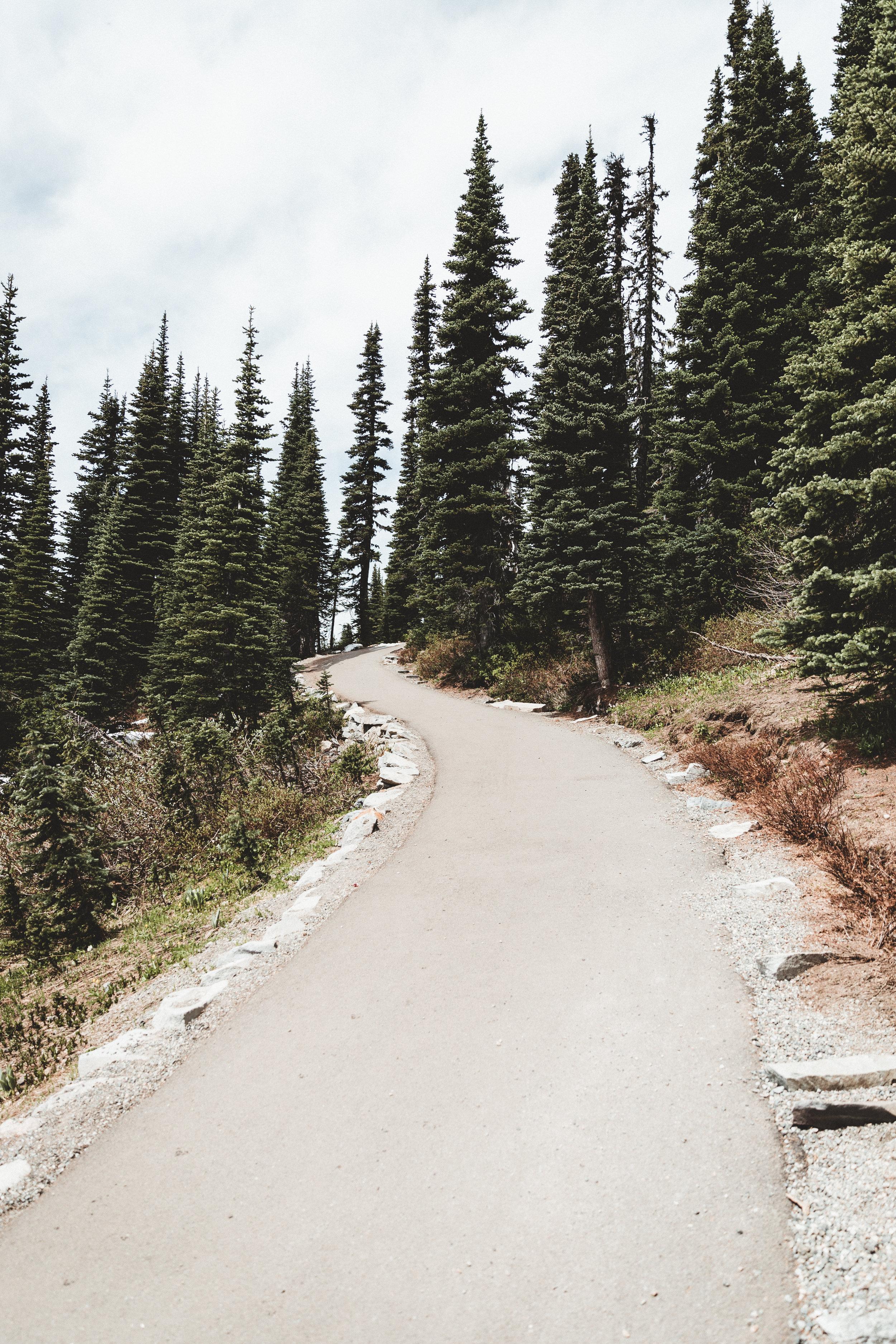 Rainier Edits-50.jpg