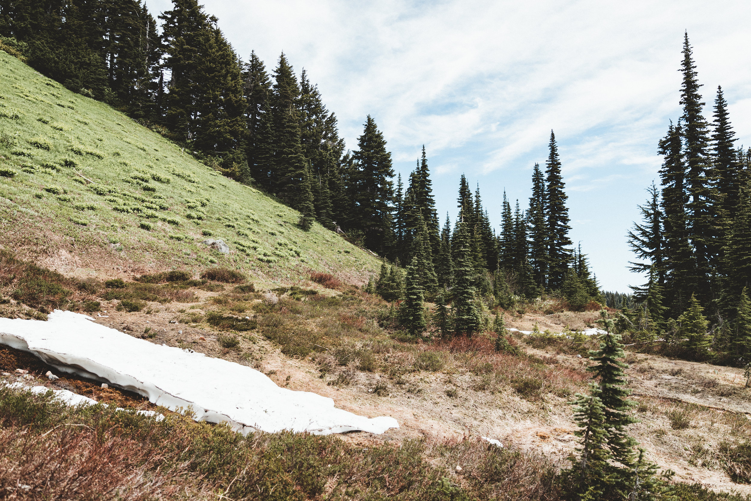 Rainier Edits-52.jpg