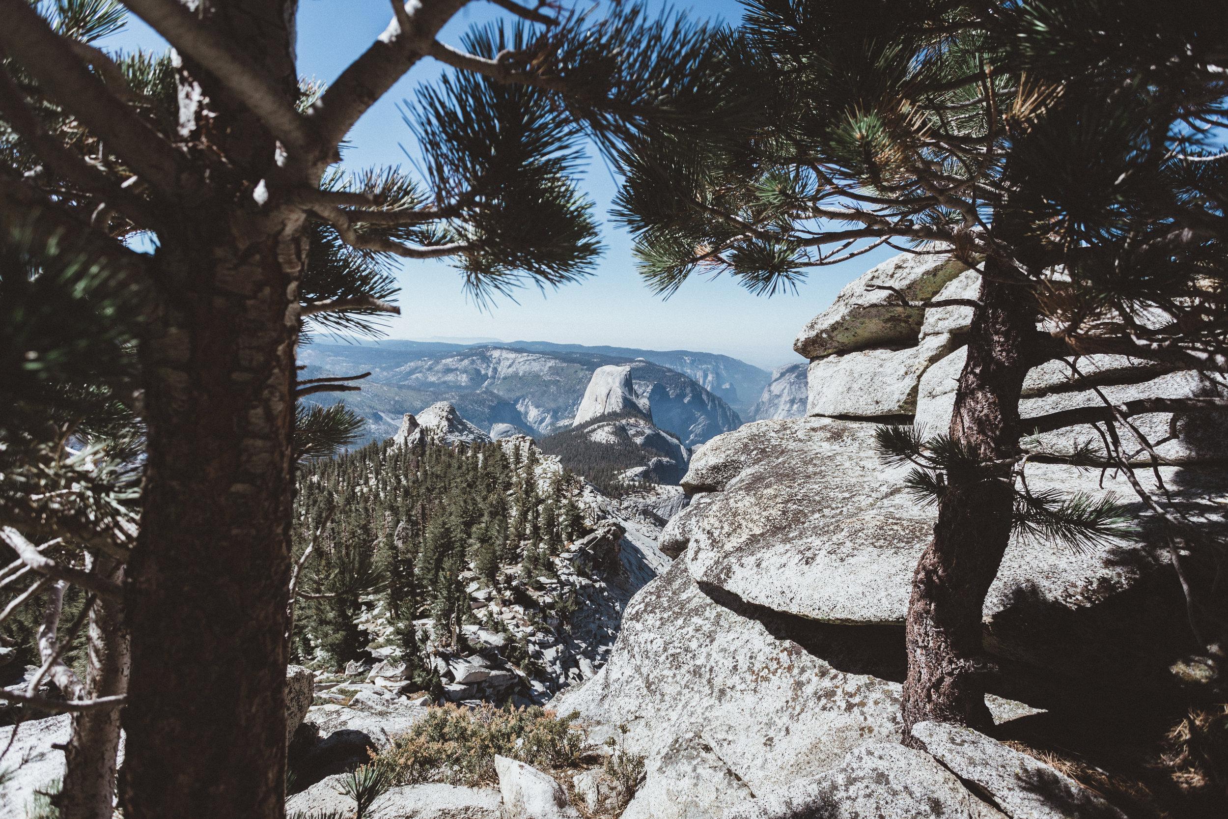 Yosemite16 Edits-160.jpg