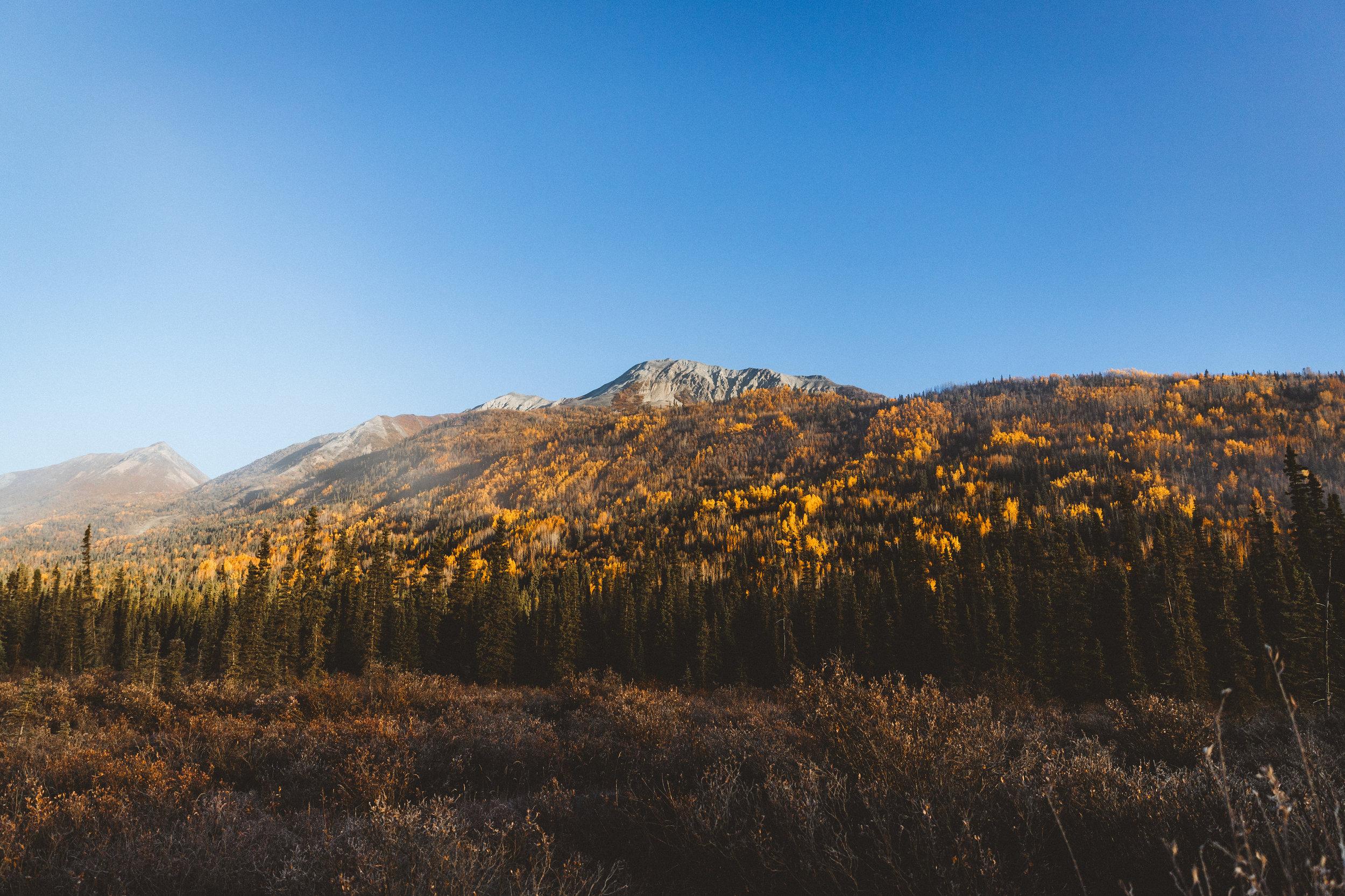 Alaska Edits-102.jpg