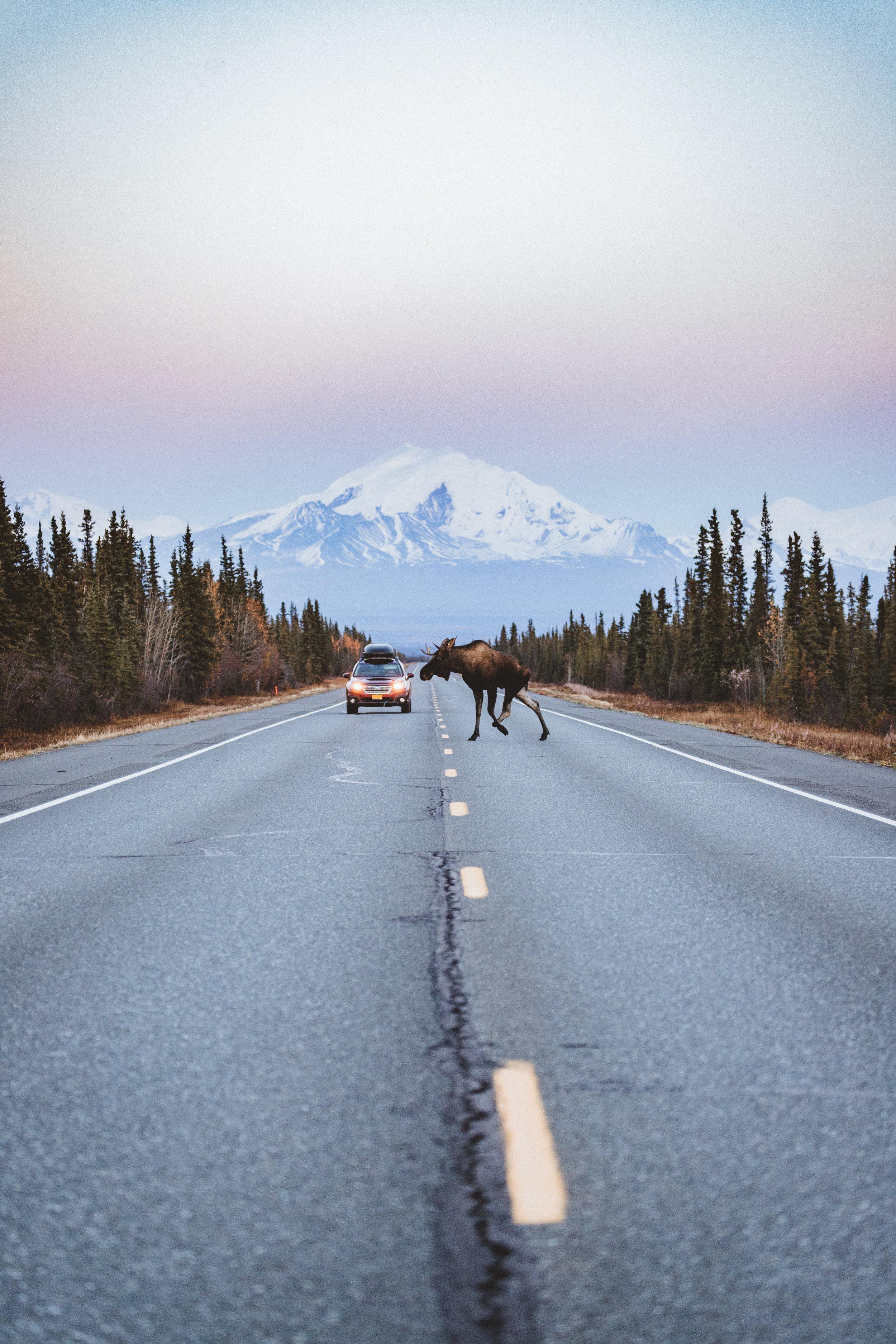 Alaska Edits-192.jpg