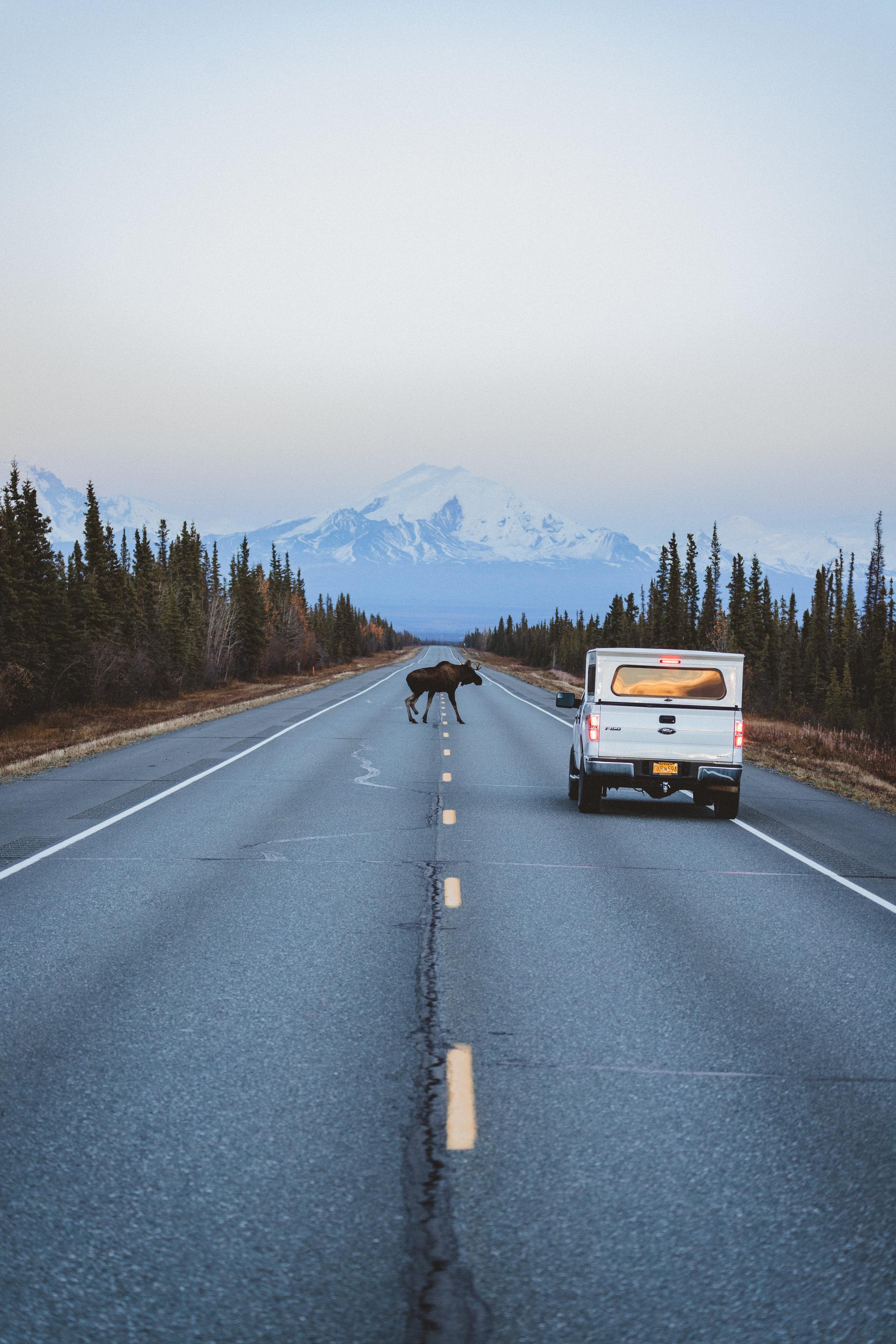 Alaska Edits-180.jpg