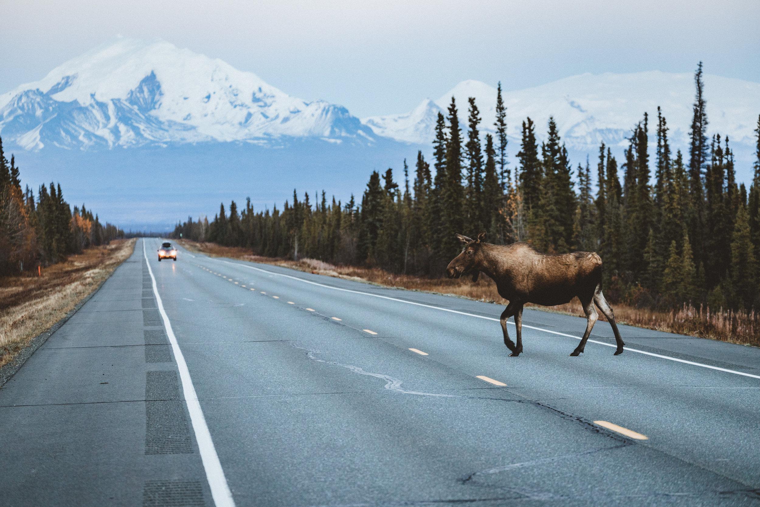 Alaska Edits-190.jpg
