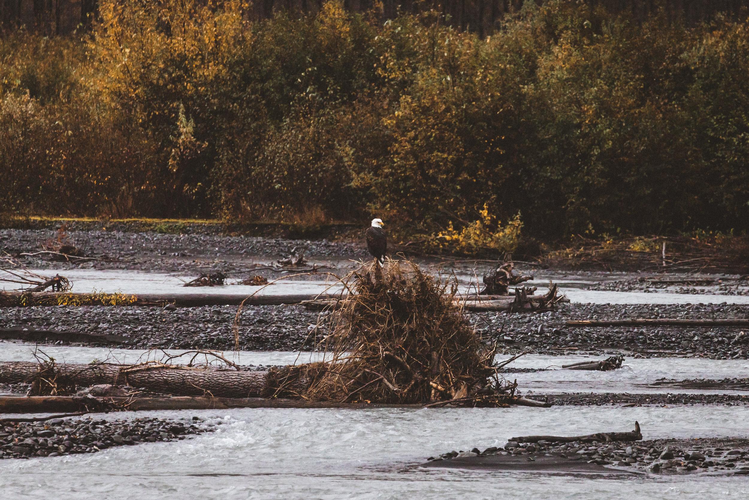 Alaska Edits-279.jpg