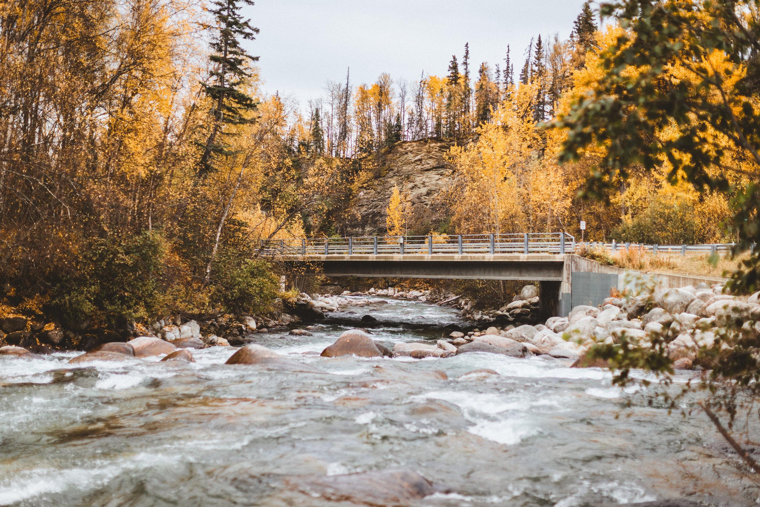 Alaska Edits-197.jpg