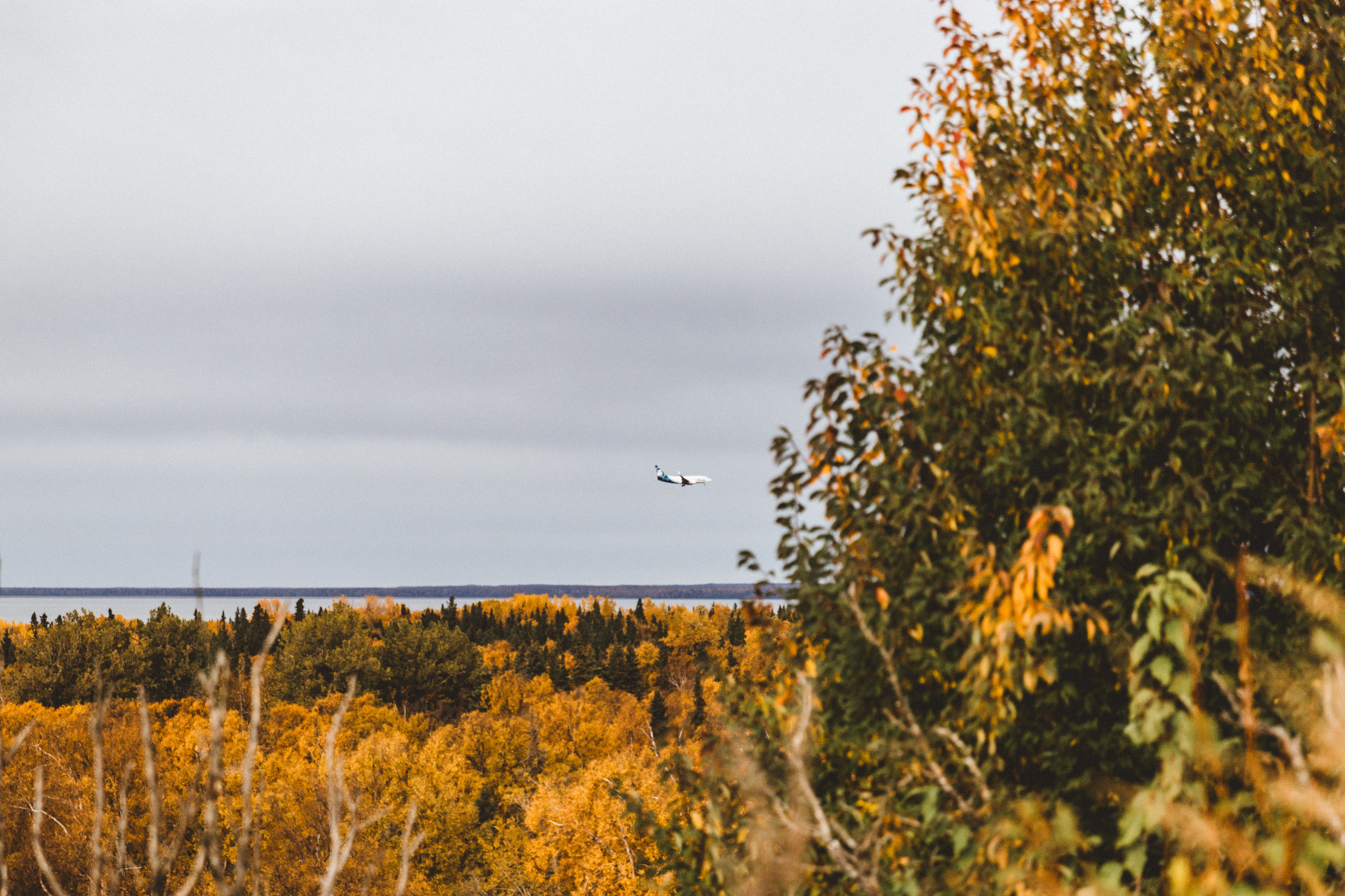 Alaska Edits-301.jpg