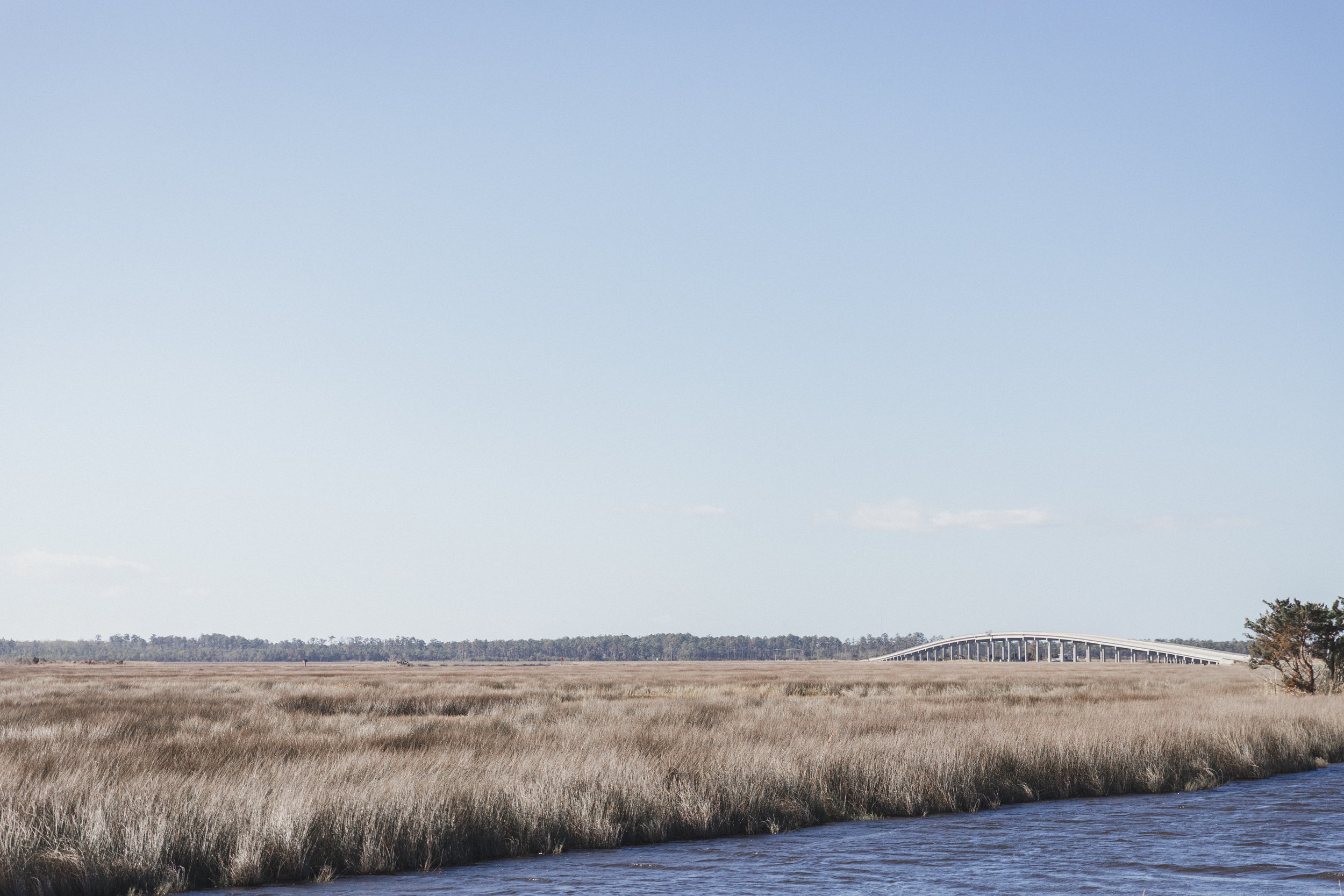 Outer Banks Edits-4.jpg