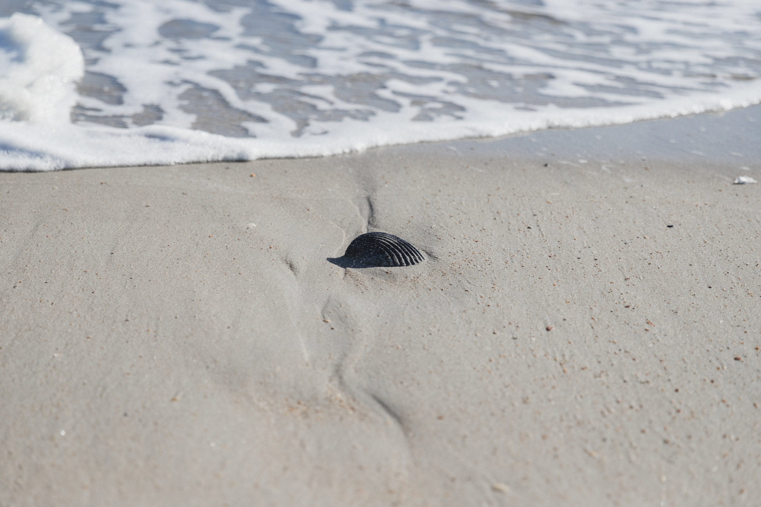 Outer Banks Edits-42.jpg