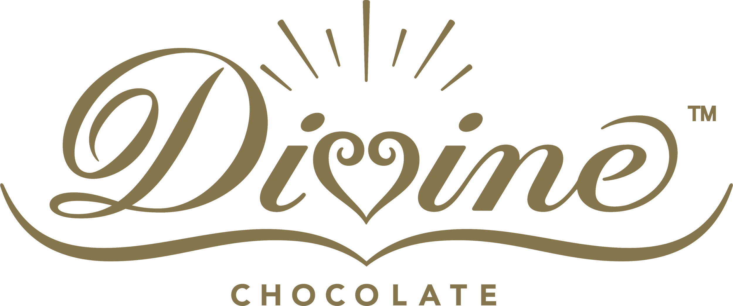 Divine Logo New 2018 Transparent.png