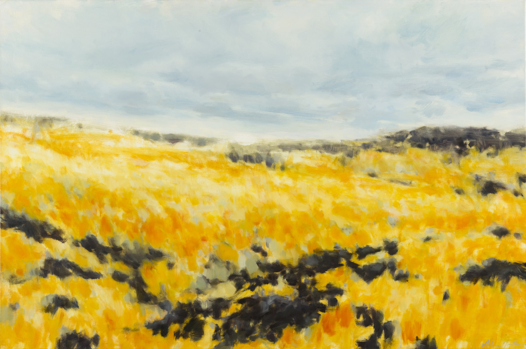 """Fields of Gold"" by Dolores Justus (c)2014"
